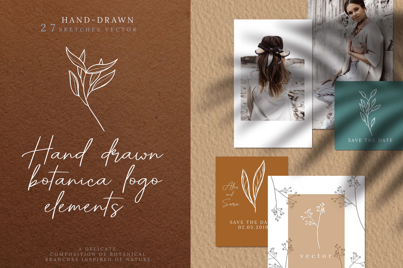 27款手绘植物标志元素设计矢量素材 Hand Drawn Botanical Logo Elements插图