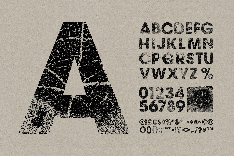 高清木纹字母符号背景纹理素材 Wood Grain Type插图