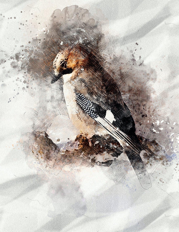 逼真铅笔素描水彩画效果照片处理特效PS动作 Pencil Watercolor Photoshop Action插图(11)