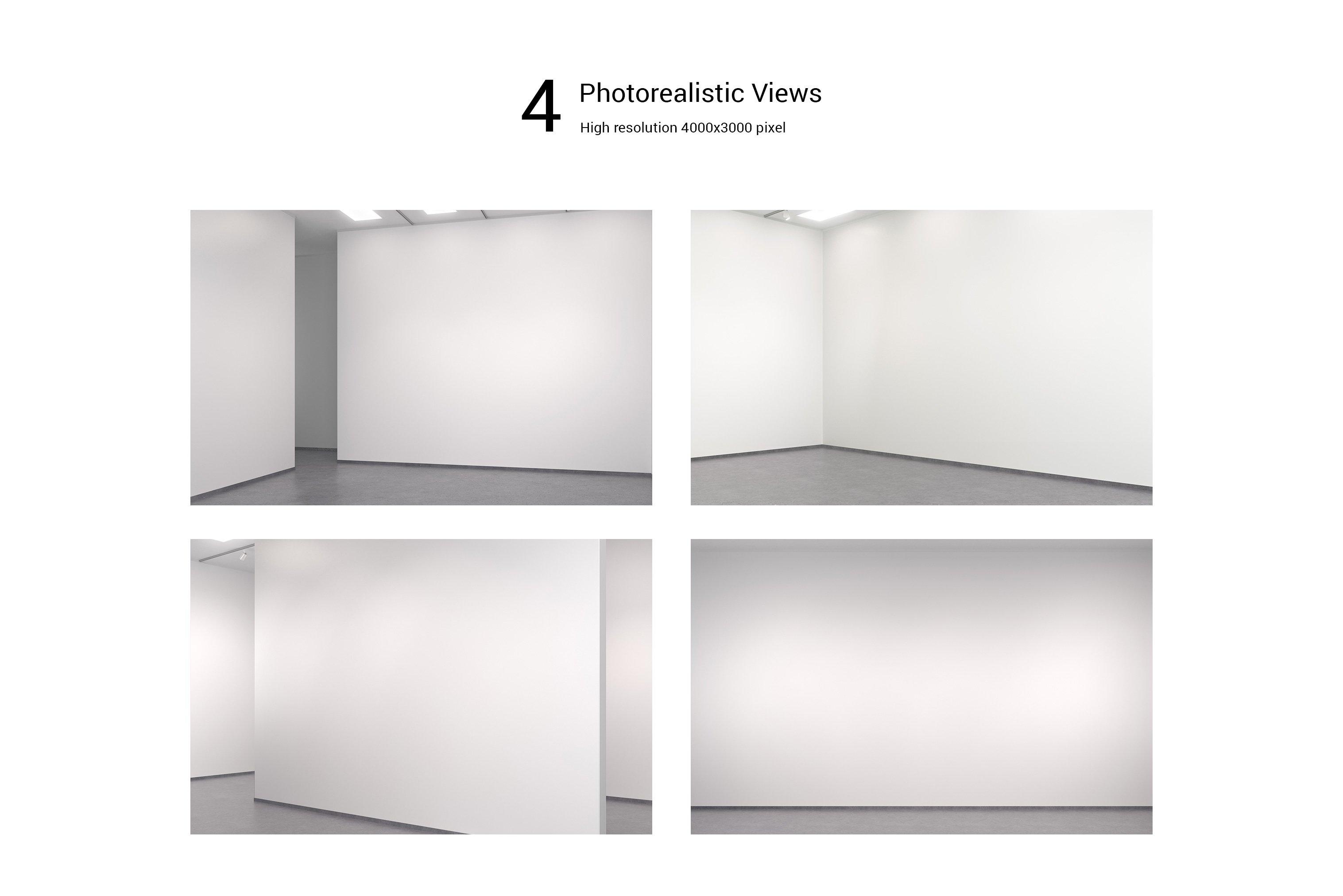 美术馆绘画艺术品相片展示样机模板 Art Gallery Mockup插图(13)