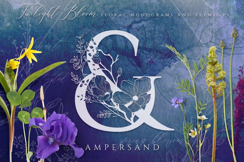 优雅花卉字母数字矢量图案设计素材 Floral Monograms & Elements插图(4)