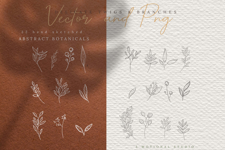 27款手绘植物标志元素设计矢量素材 Hand Drawn Botanical Logo Elements插图(1)