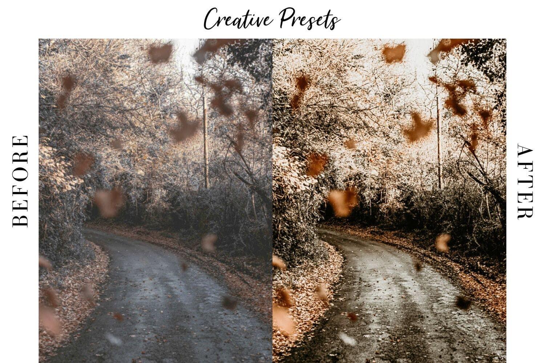 秋季主题暖色调滤镜摄影照片后期调色LR预设 Autumn Lightroom Mobile Presets插图(2)