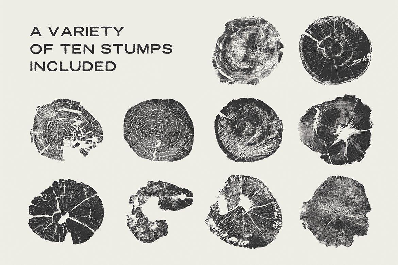 树桩木质背景纹理矢量素材 Wood Tree Stumps插图(2)