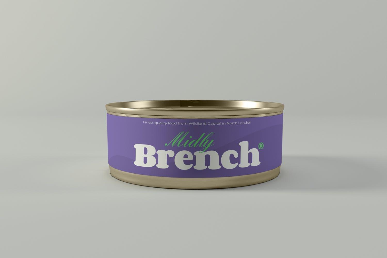 食品罐头金属罐设计展示样机 Food Tin Can Mockups插图(2)