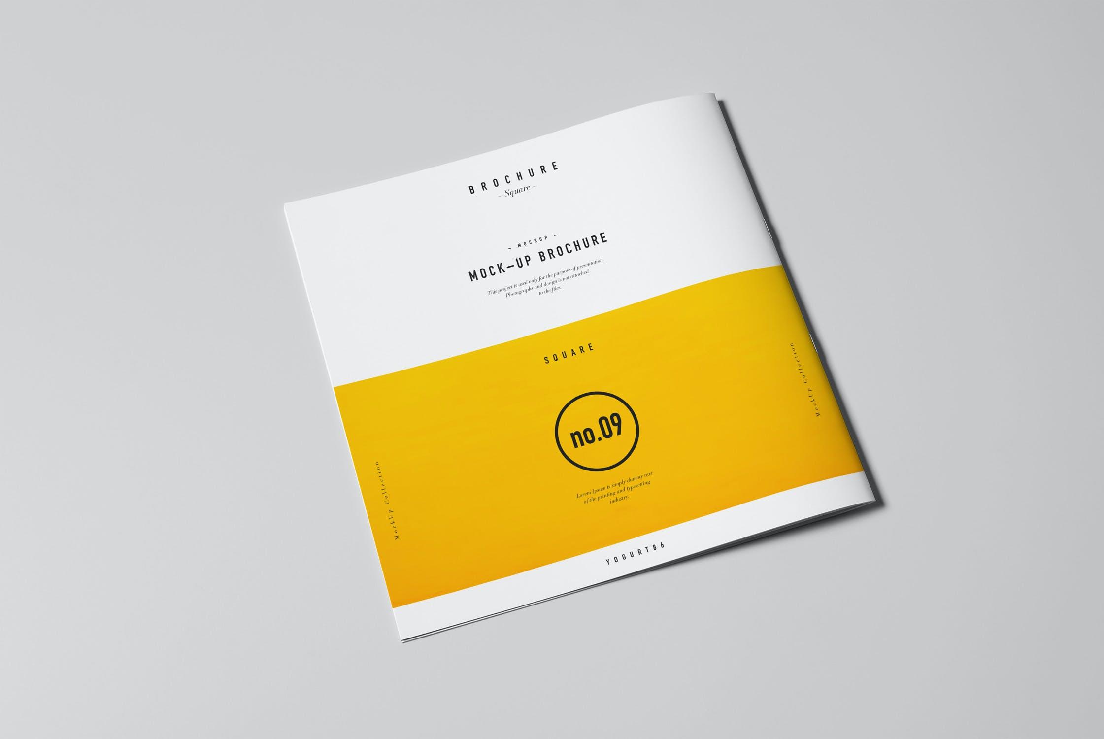 8款方形杂志画册设计展示样机模板 Square Brochure Mockup插图(3)