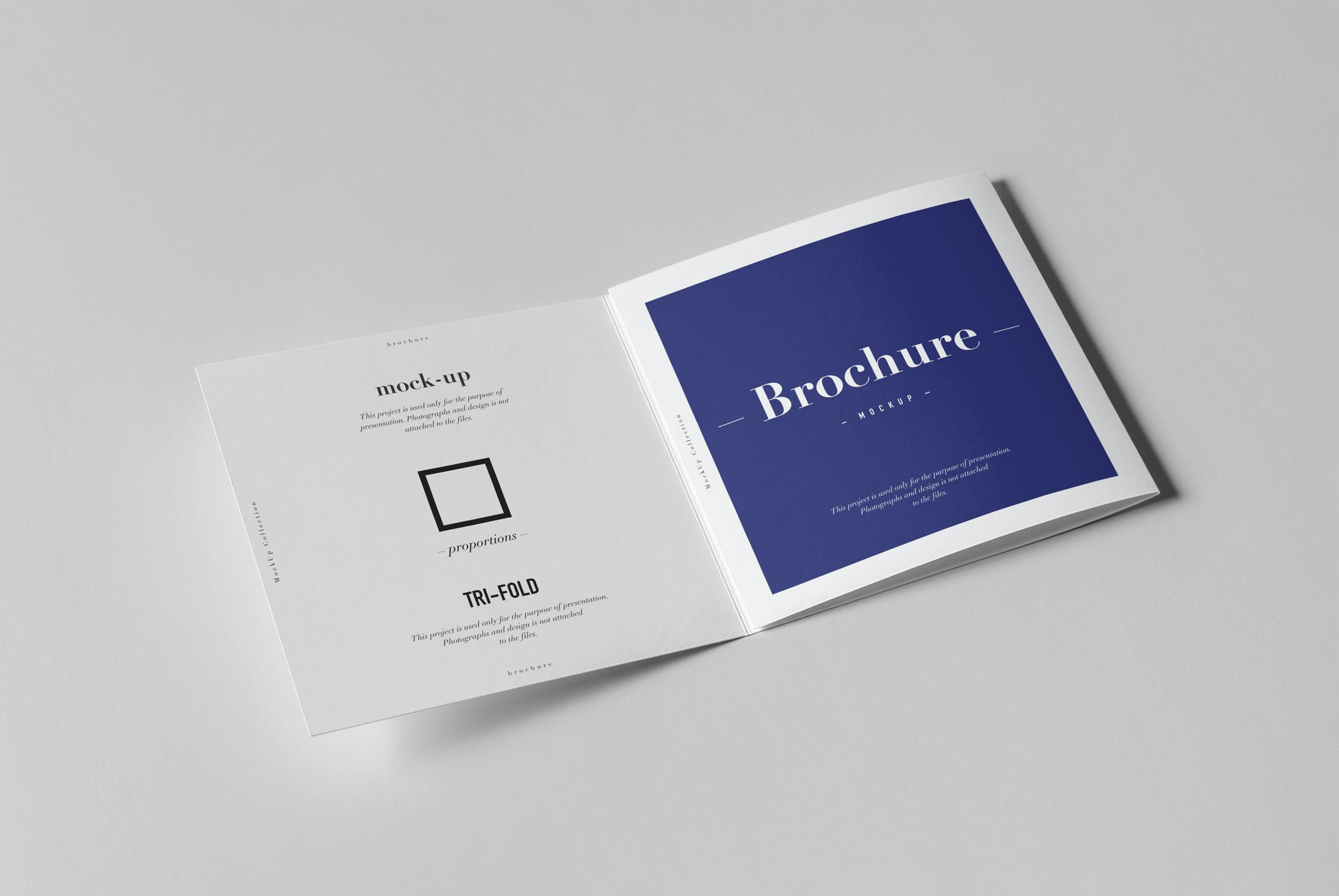8款三折页小册子设计展示样机模板 Tri-Fold Square Brochure Mockup插图(3)