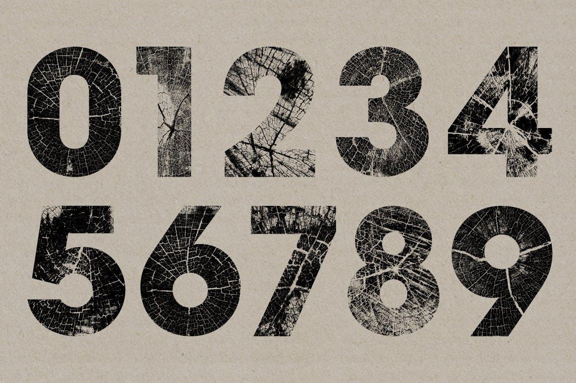 高清木纹字母符号背景纹理素材 Wood Grain Type插图(4)
