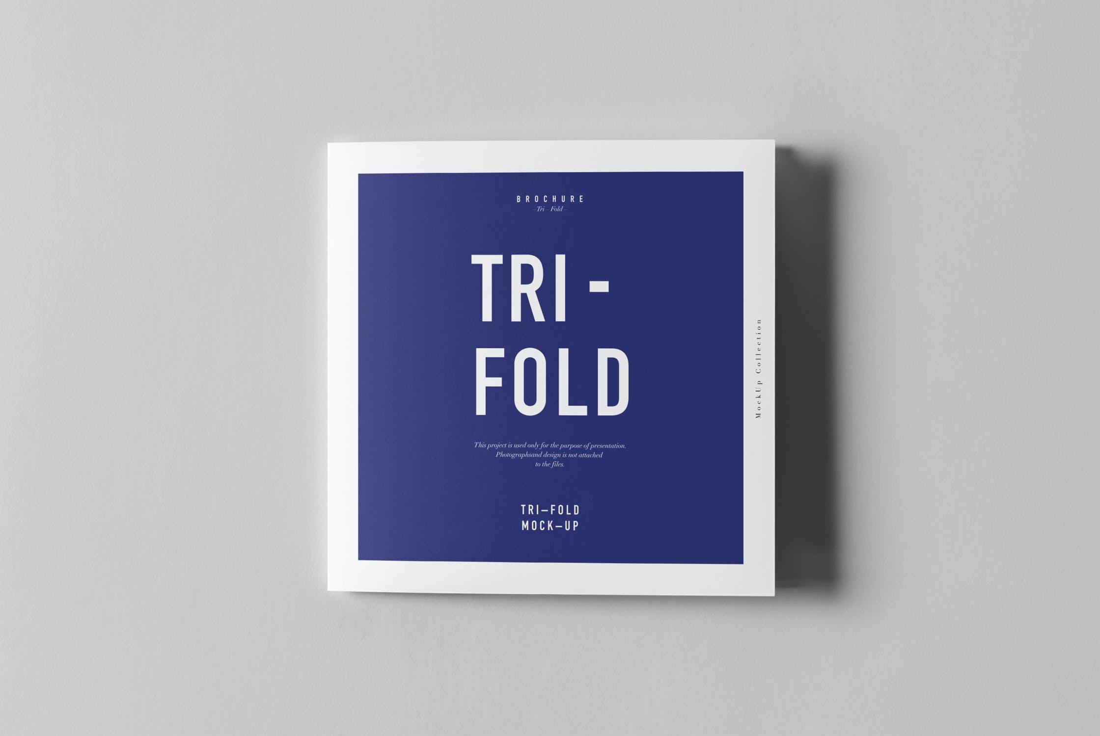 8款三折页小册子设计展示样机模板 Tri-Fold Square Brochure Mockup插图(7)