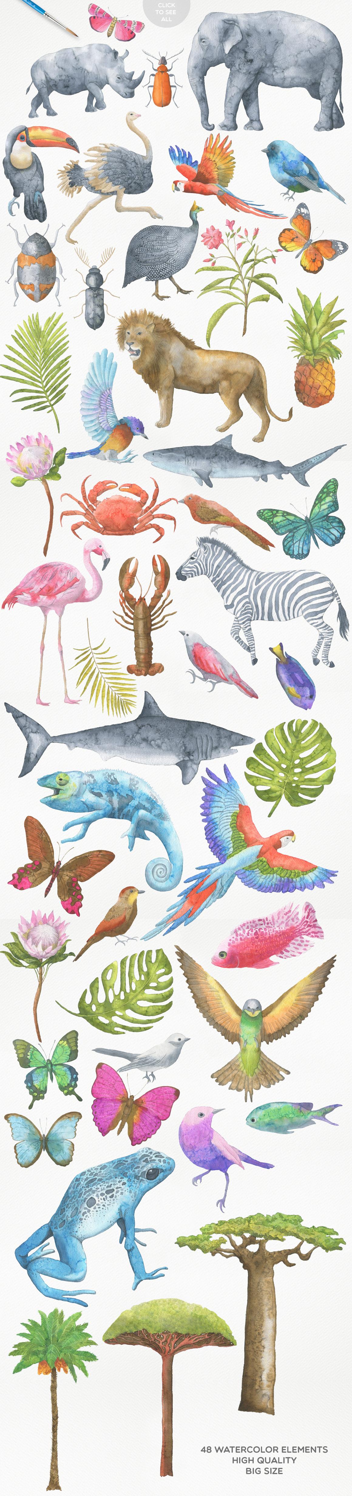 高清手绘野生动物大象犀牛水彩元素PNG图片素材 Safari Watercolor Collection插图(1)
