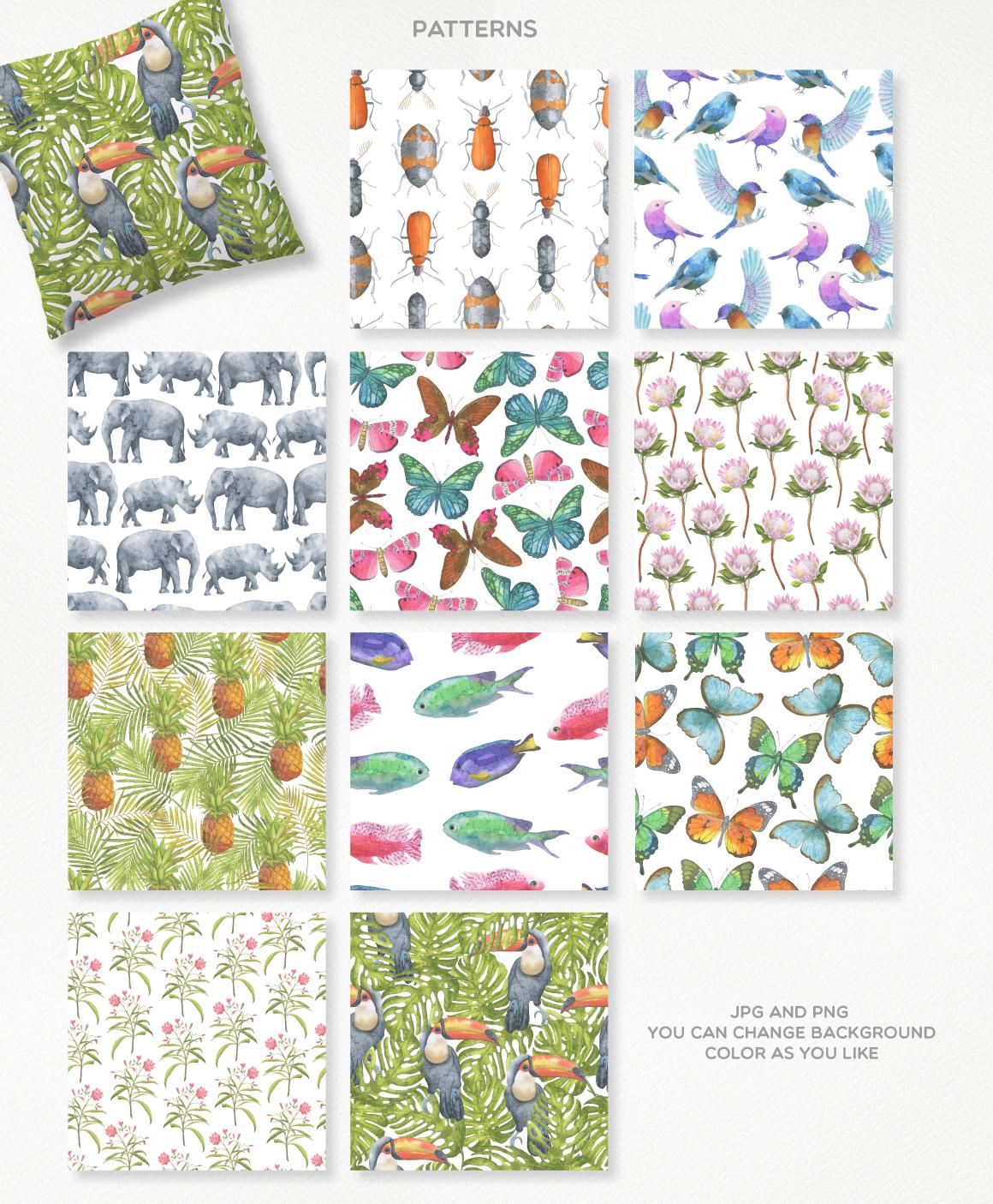 高清手绘野生动物大象犀牛水彩元素PNG图片素材 Safari Watercolor Collection插图(3)