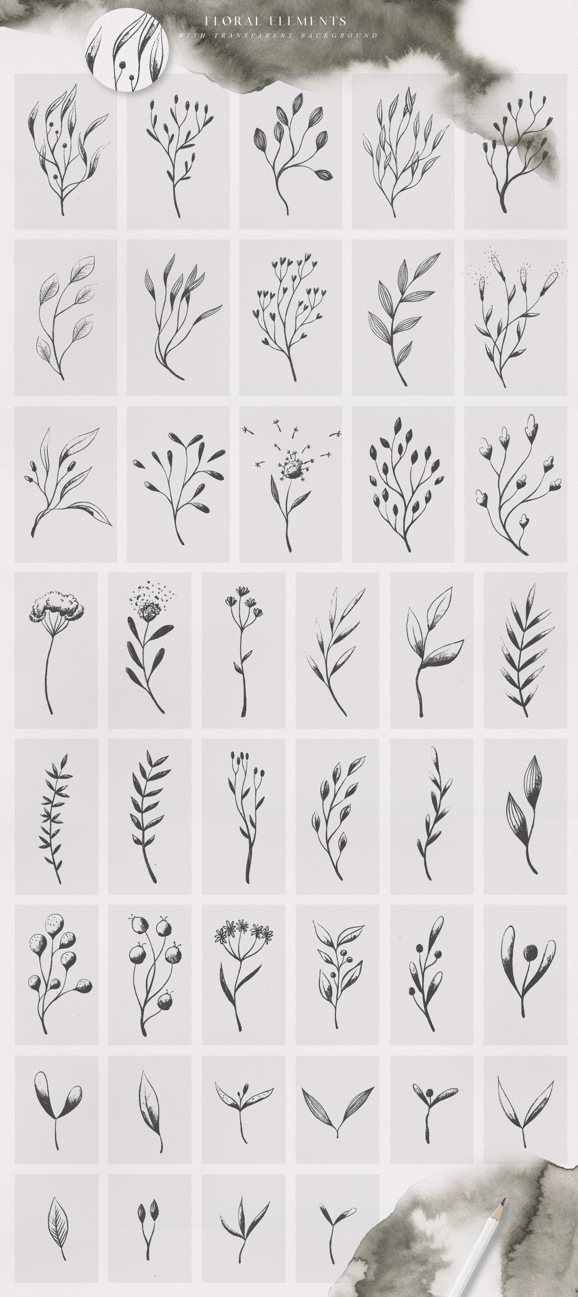 优美手绘水彩花卉树叶&水墨水彩背景素材 Magic Ombre插图(4)