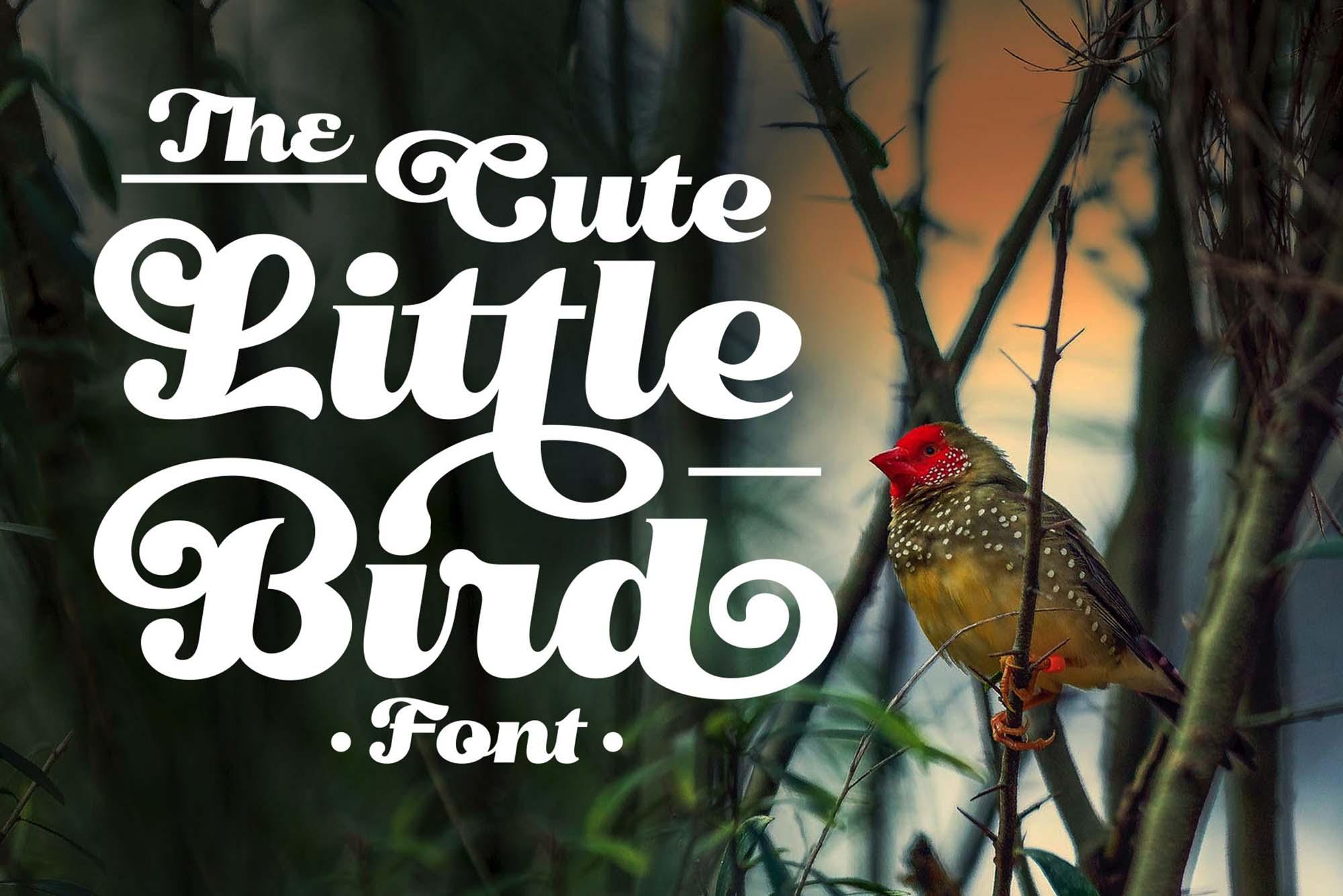艺术曲线复古风格手写英字下载 Little Bird Script Font插图(10)