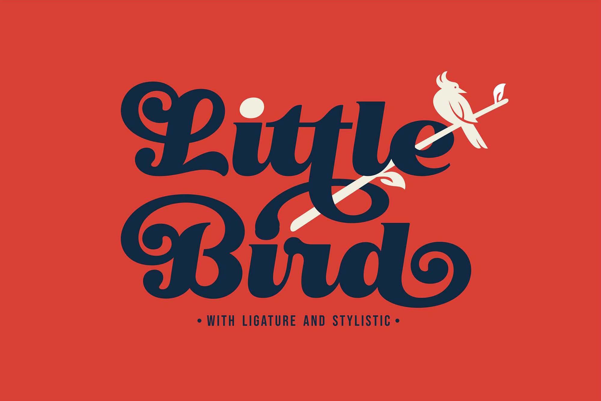 艺术曲线复古风格手写英字下载 Little Bird Script Font插图(7)