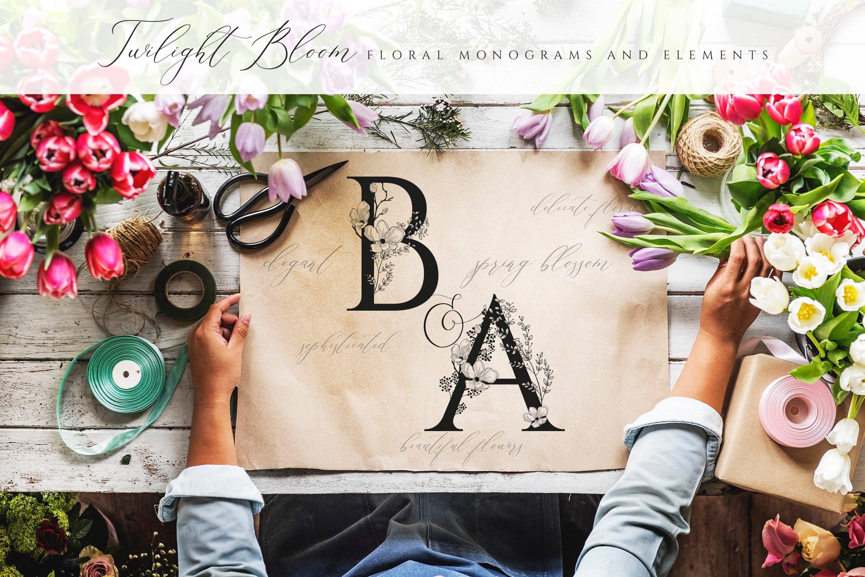 优雅花卉字母数字矢量图案设计素材 Floral Monograms & Elements插图(6)