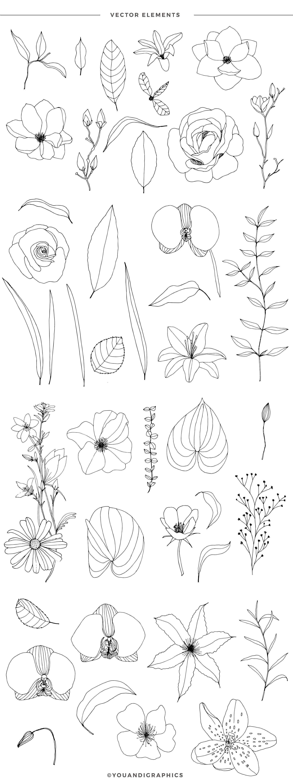手绘盛开花卉花朵矢量无缝隙图案素材 Blooming Garden Floral Patterns插图(15)