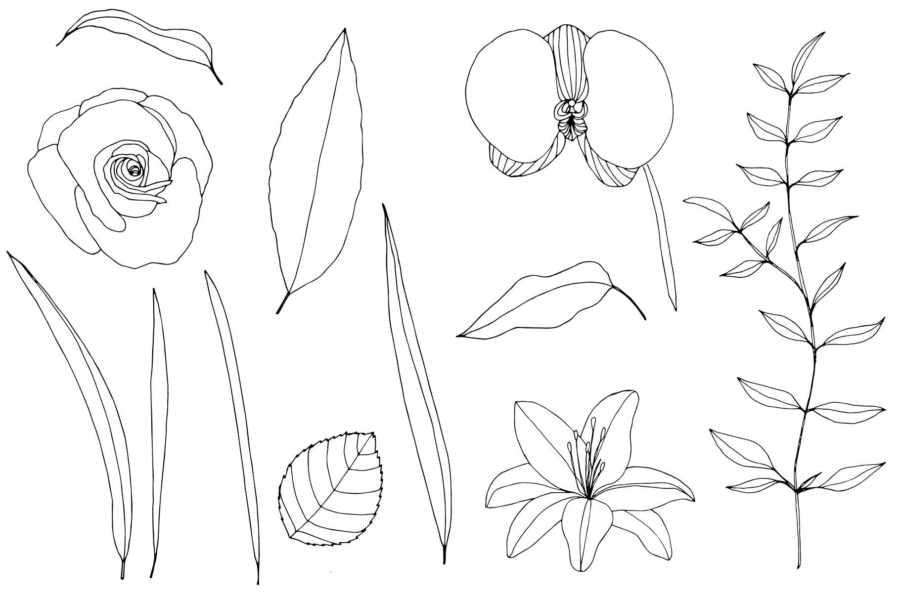 手绘盛开花卉花朵矢量无缝隙图案素材 Blooming Garden Floral Patterns插图(16)