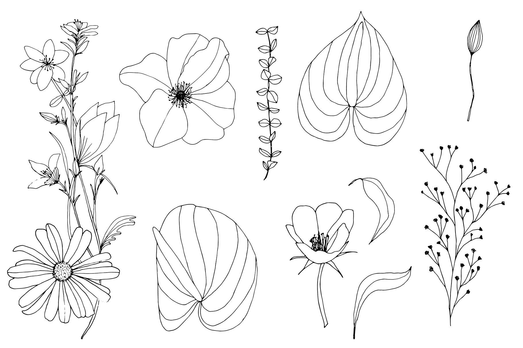 手绘盛开花卉花朵矢量无缝隙图案素材 Blooming Garden Floral Patterns插图(17)