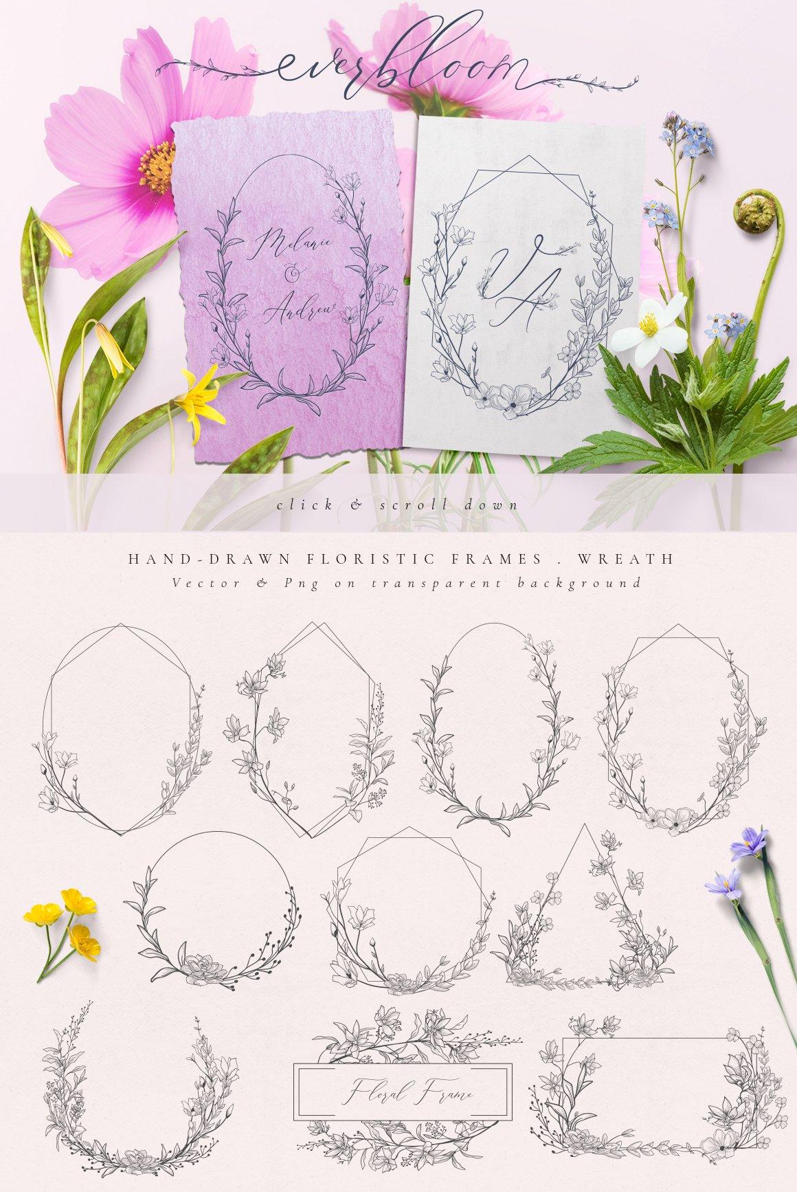 精美手绘花框花环徽标矢量图案素材 Flowered Monogram & Logo Collection插图(4)