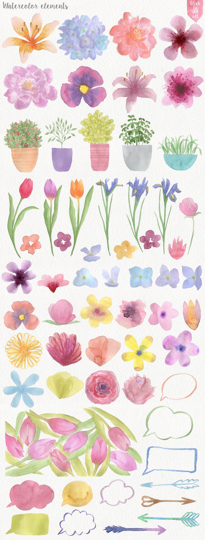 191种高清手绘花卉动物元素水彩剪贴画PNG素材 Garden Watercolor DIY插图(1)