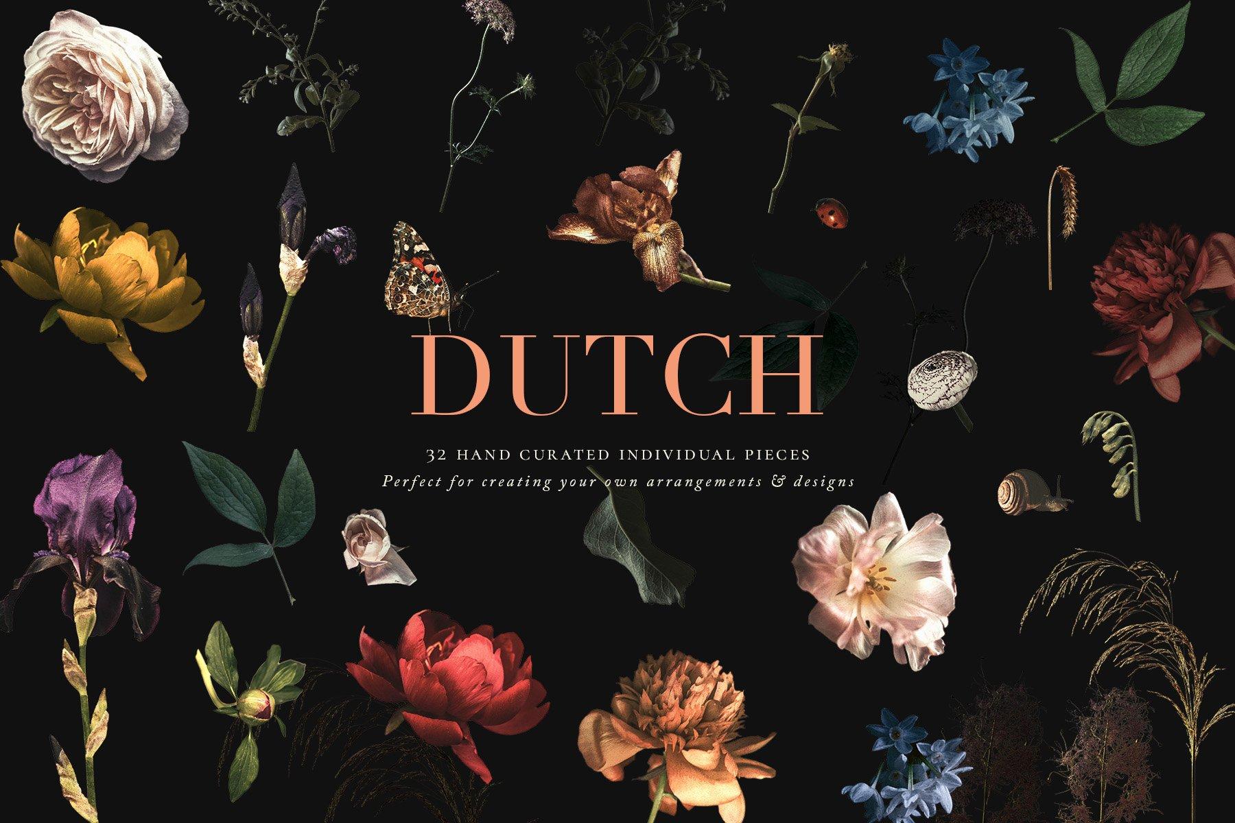 奢华复古宫廷花卉植物海报视觉设计PNG图片素材 Vintage Floral Clip Art – Dutch插图(4)