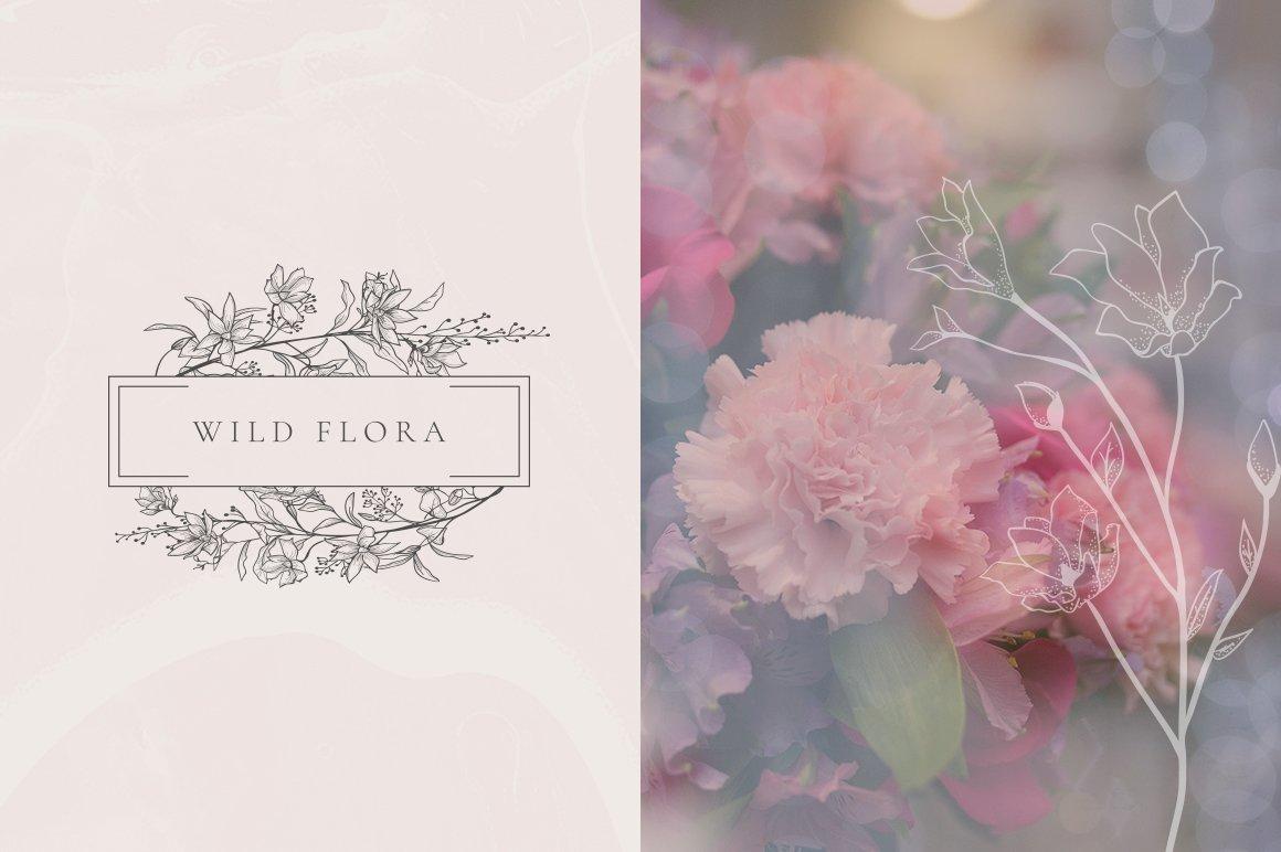 精美手绘花框花环徽标矢量图案素材 Flowered Monogram & Logo Collection插图(11)