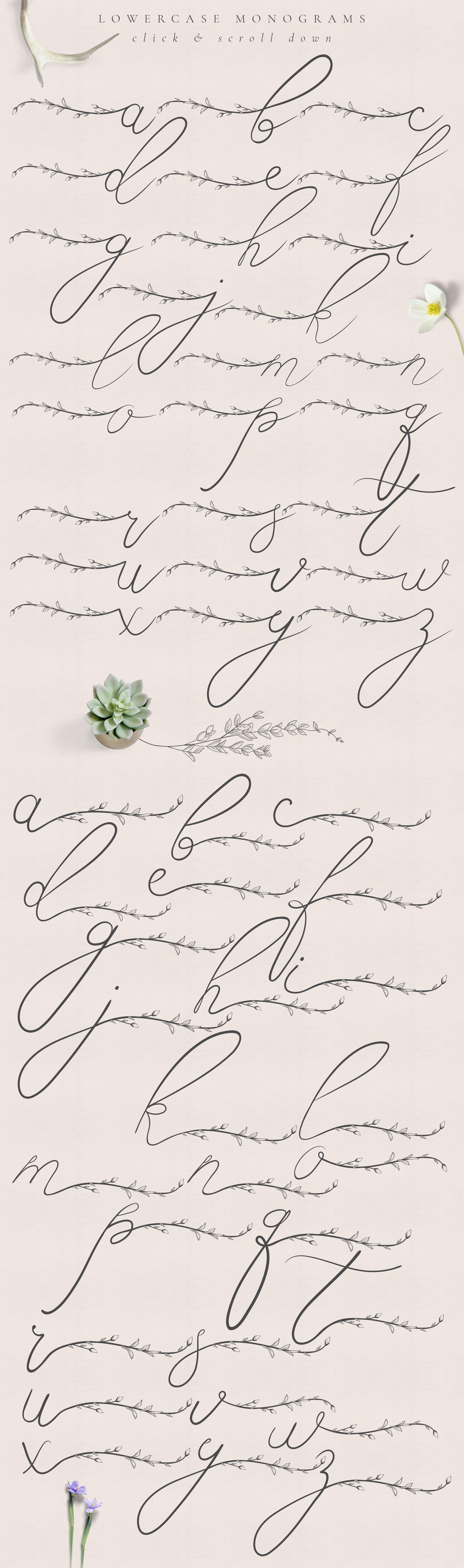 精美手绘花框花环徽标矢量图案素材 Flowered Monogram & Logo Collection插图(3)