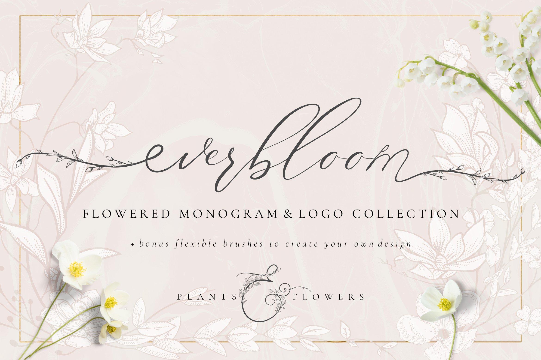 精美手绘花框花环徽标矢量图案素材 Flowered Monogram & Logo Collection插图