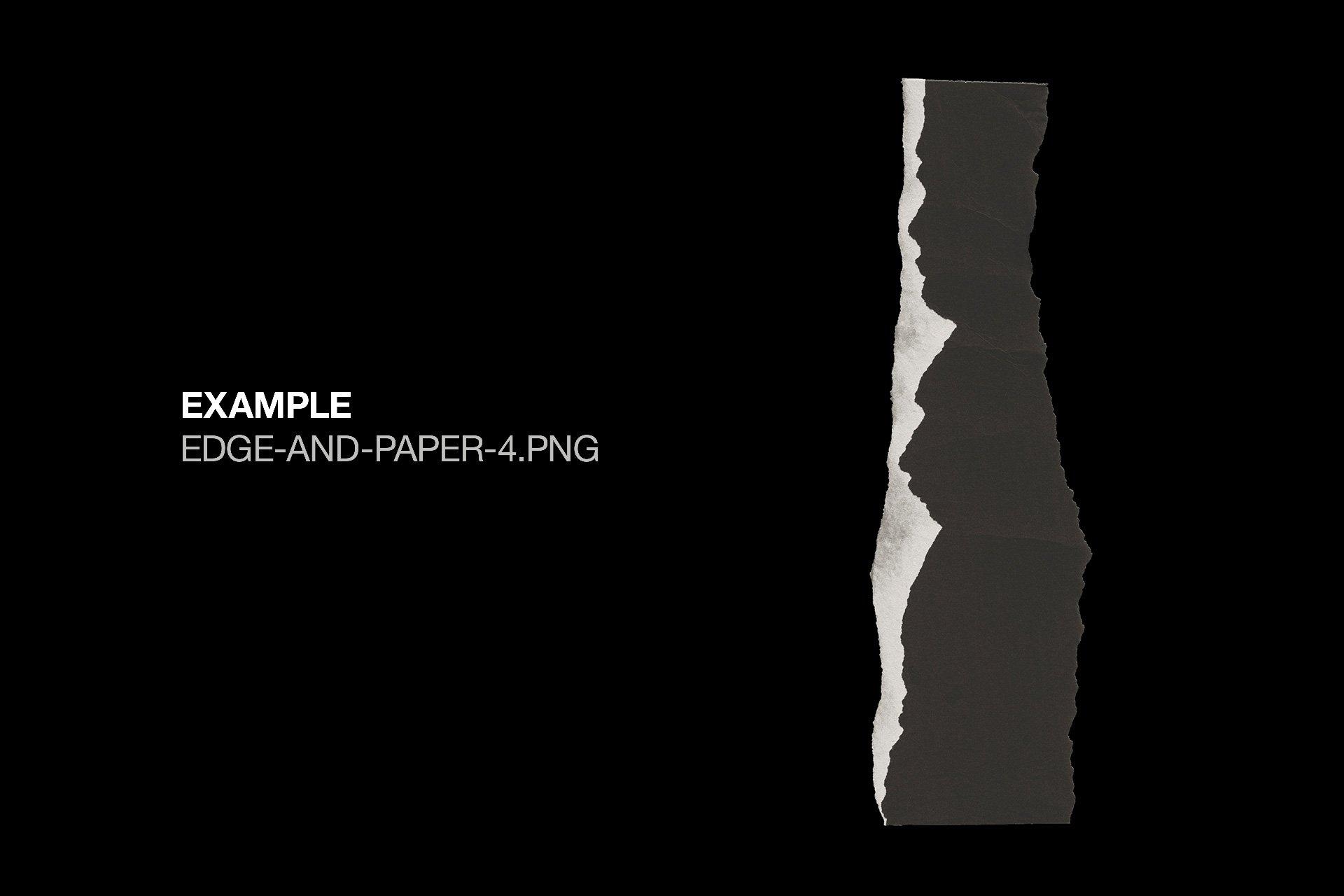 40款复古做旧纸张撕纸破损边缘样机纹理PNG设计素材套装 Torn Paper Textures插图(4)