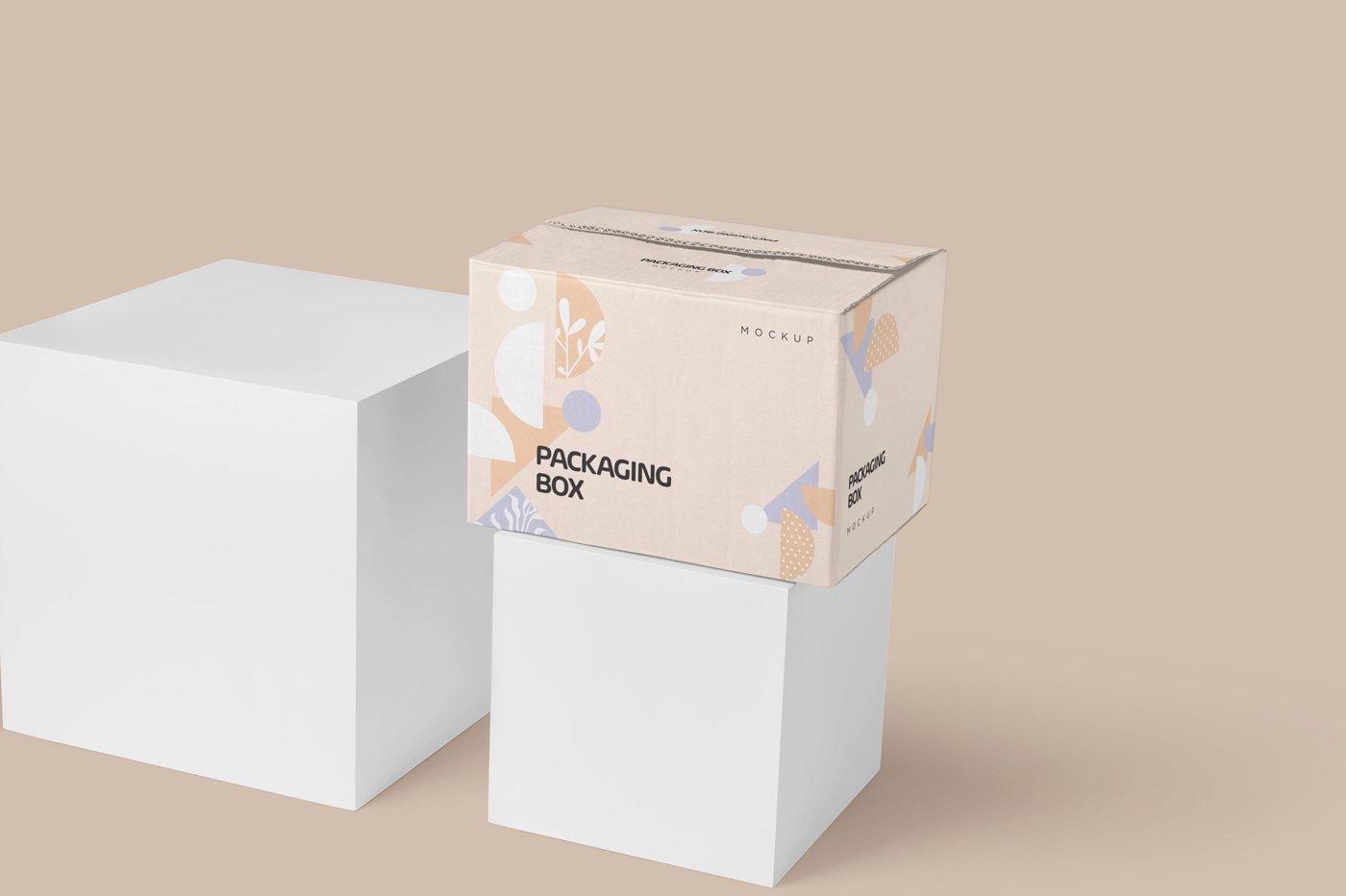 矩形瓦楞硬纸板快递包装箱设计展示样机 Rectangular Cardboard Box Mockups插图(3)