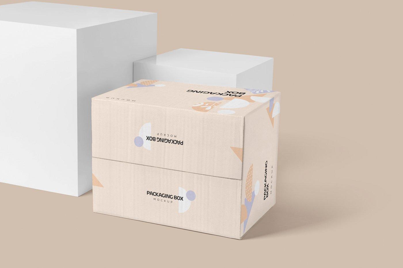 矩形瓦楞硬纸板快递包装箱设计展示样机 Rectangular Cardboard Box Mockups插图(4)