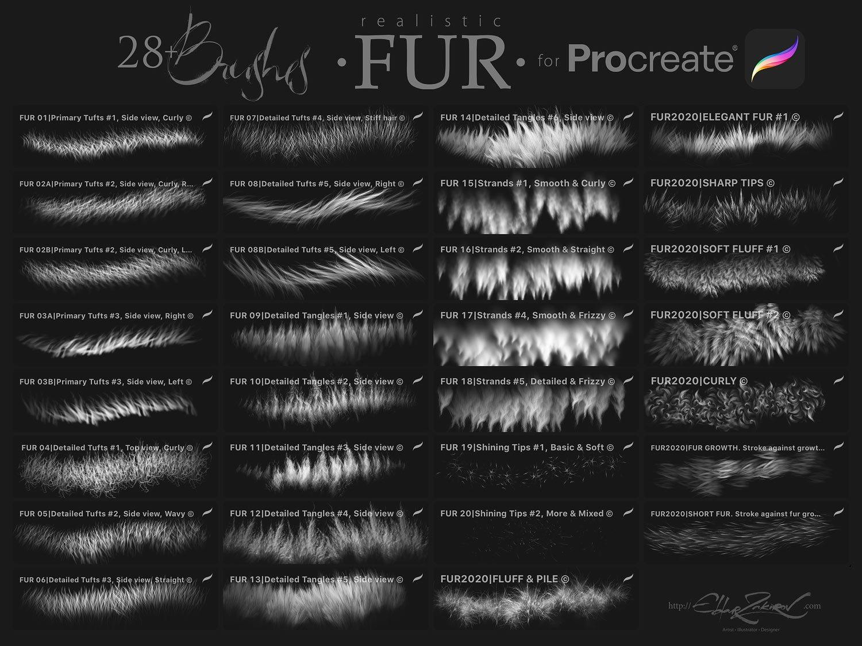 28个逼真毛茸茸毛发Procreate笔刷下载 28 Realistic FUR Brushes for Procreate 5插图(6)