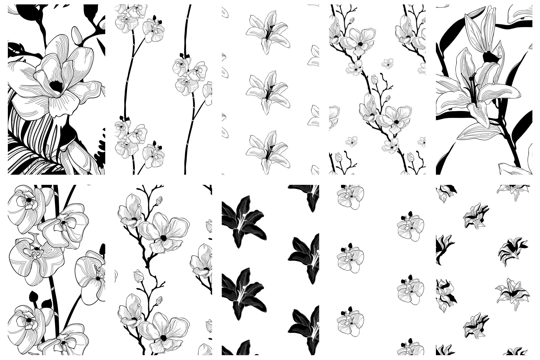 35款优雅花卉植物无缝隙矢量图案素材 35+ Patterns & 8 Instagram Templates插图(11)