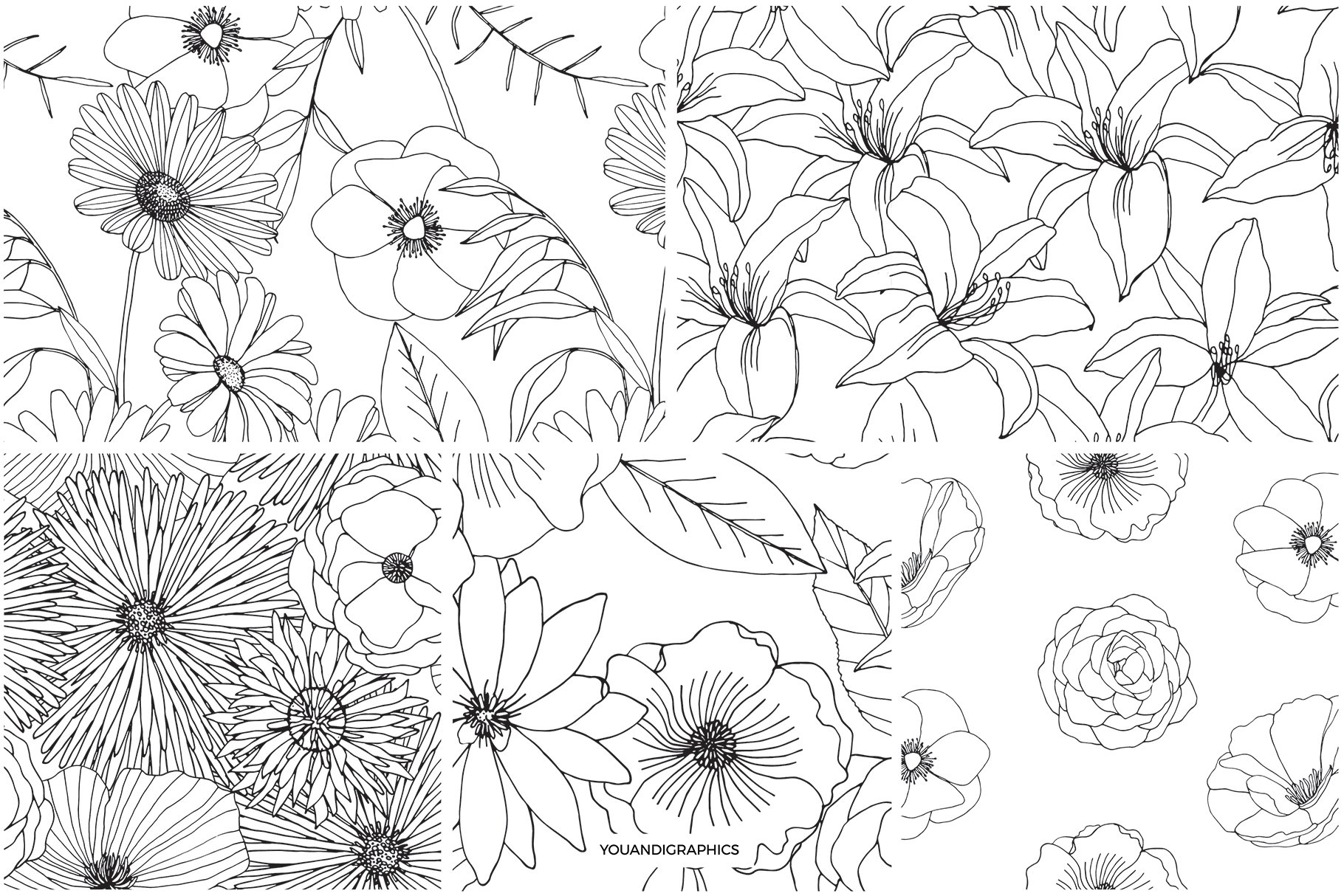 精美手绘花卉花朵无缝隙矢量线稿图案素材 Floral Blast Patterns And Bouquets插图(11)