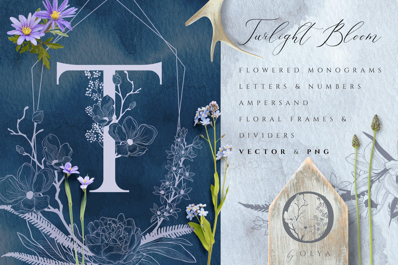 优雅花卉字母数字矢量图案设计素材 Floral Monograms & Elements插图