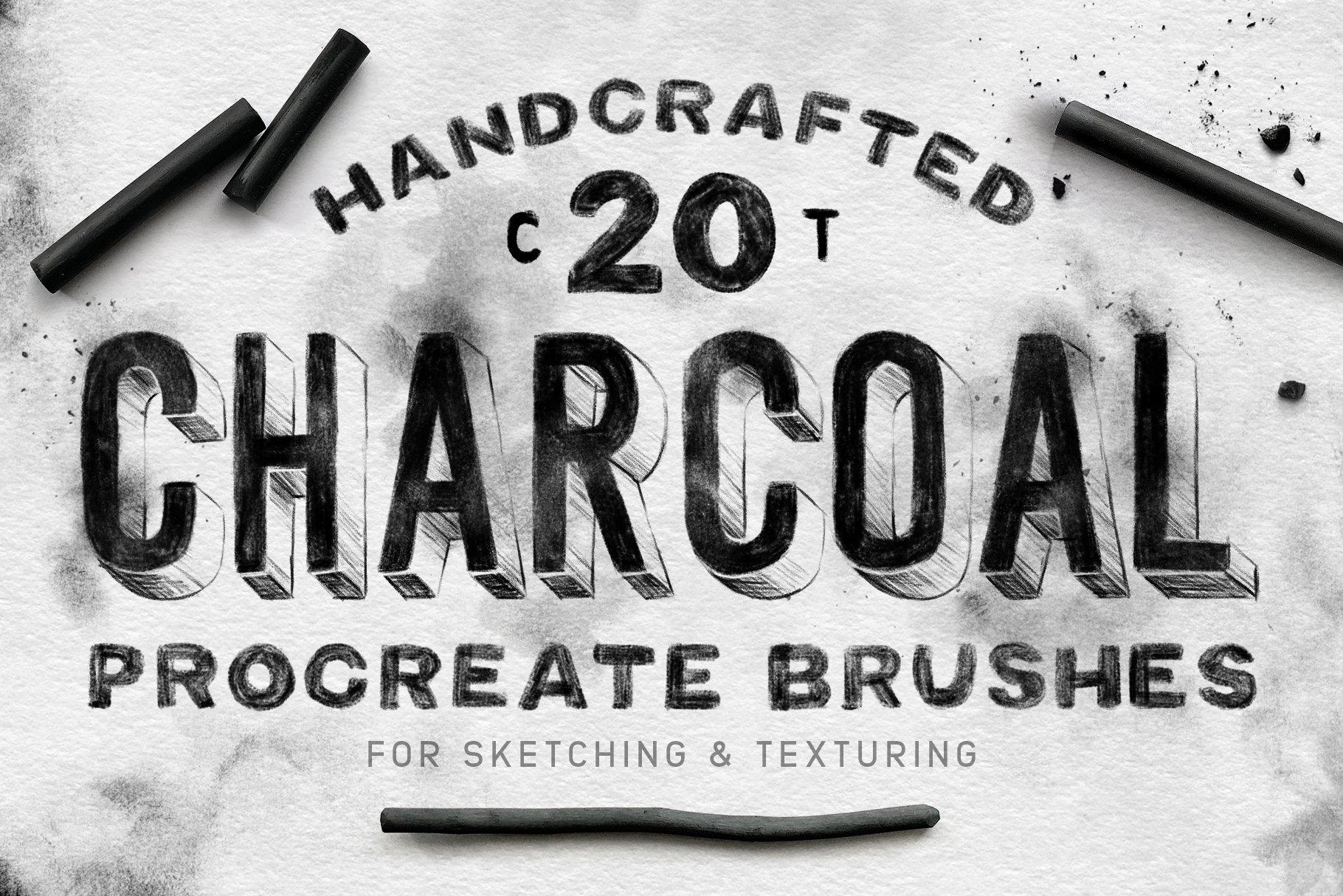 20款木炭铅笔素描绘画画笔Procreate笔刷 Charcoal Procreate Brushes插图