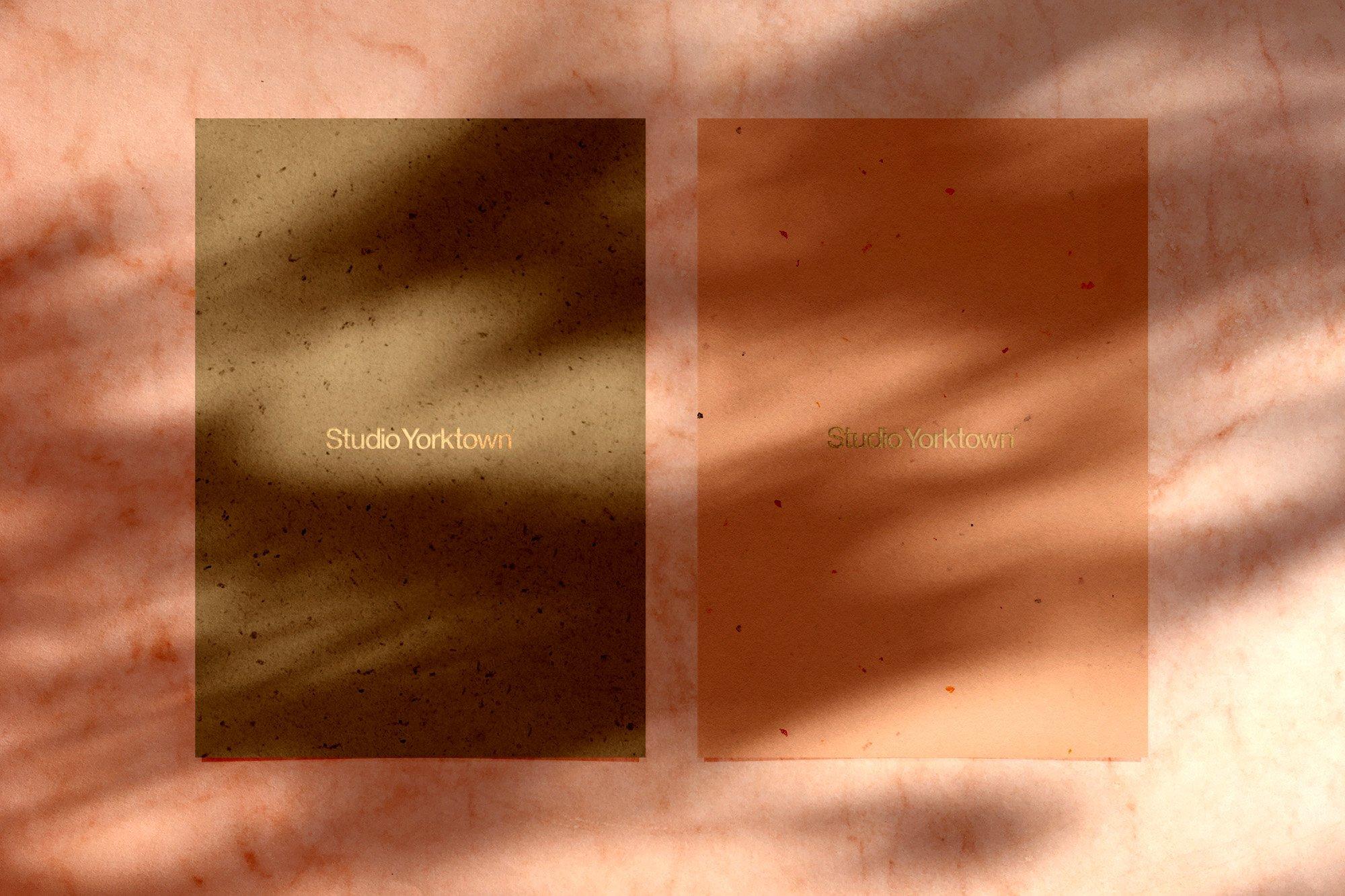 [淘宝购买] 15款高清植物阴影叠加PNG透明免抠图片素材 Madara – Botanical Shadow Overlays插图(3)
