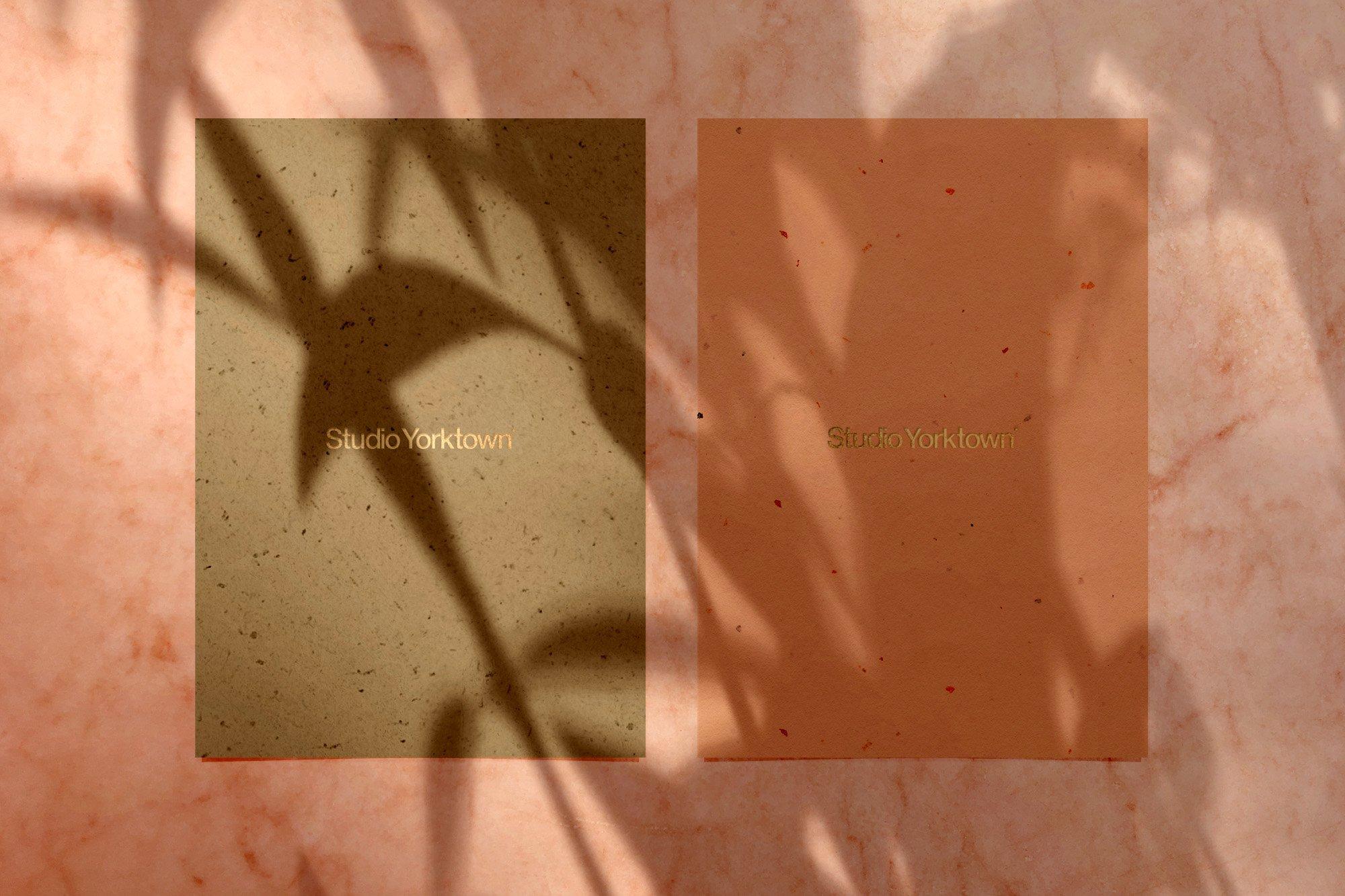 [淘宝购买] 15款高清植物阴影叠加PNG透明免抠图片素材 Madara – Botanical Shadow Overlays插图(4)