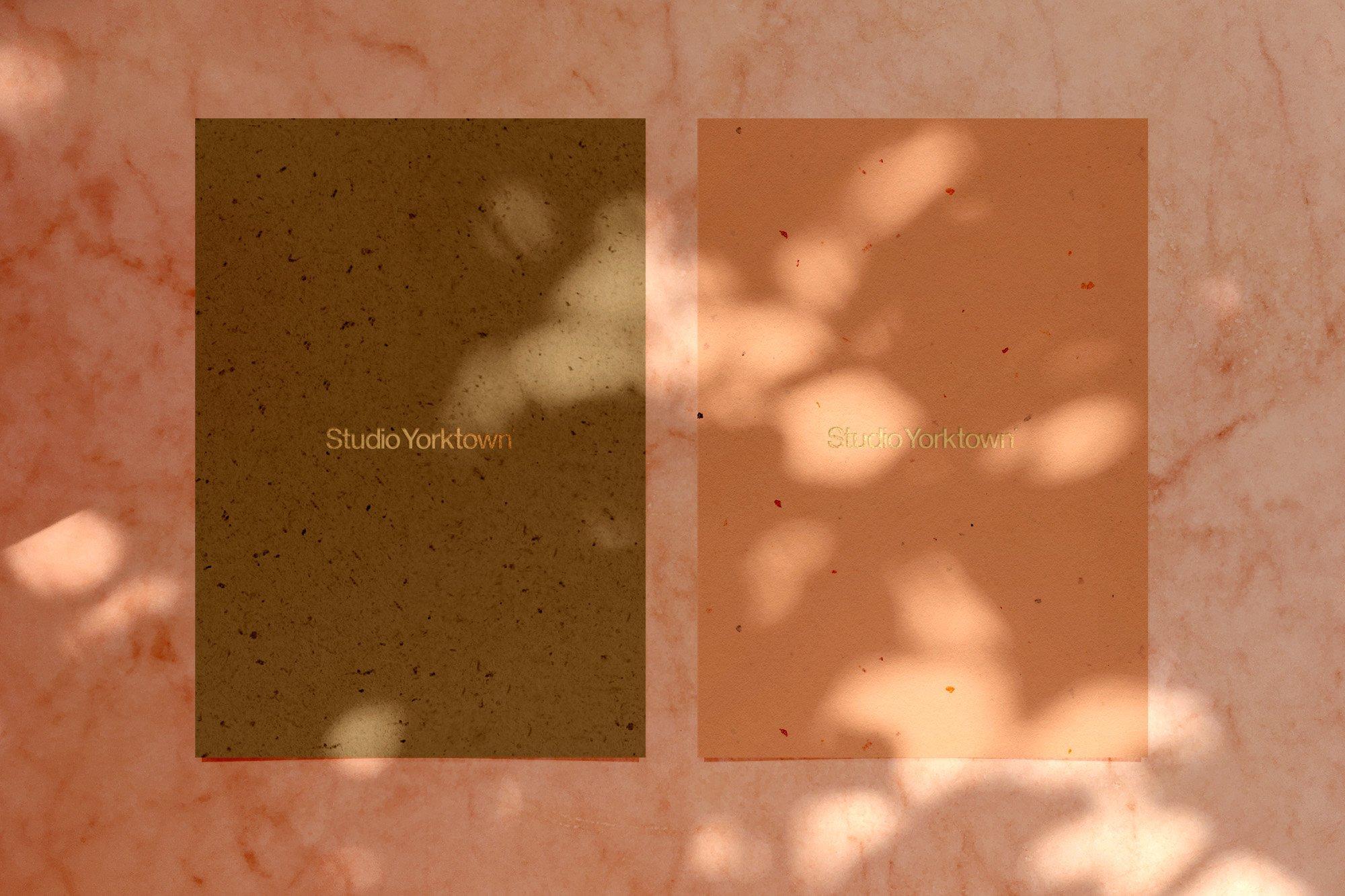 [淘宝购买] 15款高清植物阴影叠加PNG透明免抠图片素材 Madara – Botanical Shadow Overlays插图(7)
