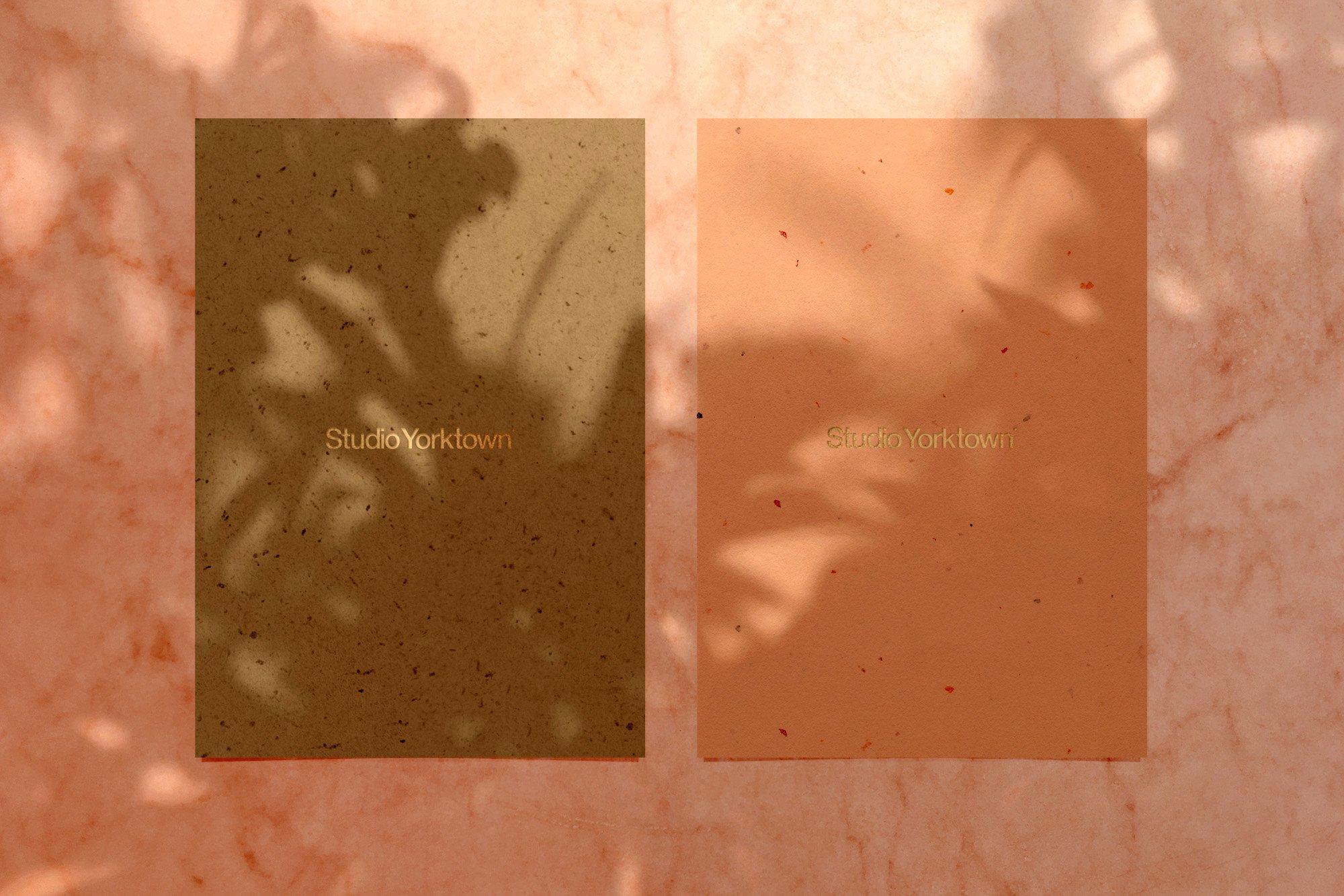 [淘宝购买] 15款高清植物阴影叠加PNG透明免抠图片素材 Madara – Botanical Shadow Overlays插图(8)