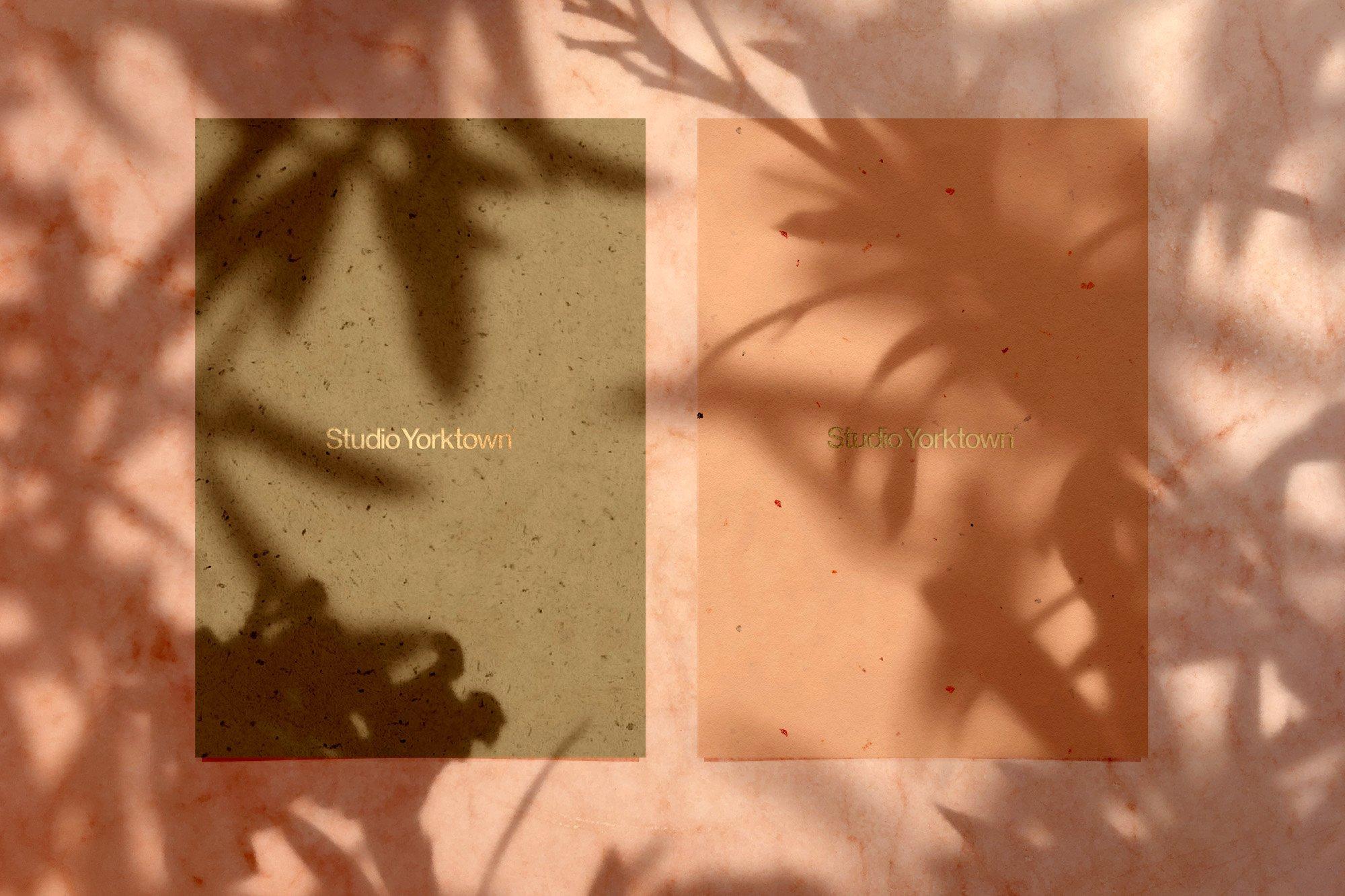 [淘宝购买] 15款高清植物阴影叠加PNG透明免抠图片素材 Madara – Botanical Shadow Overlays插图(9)