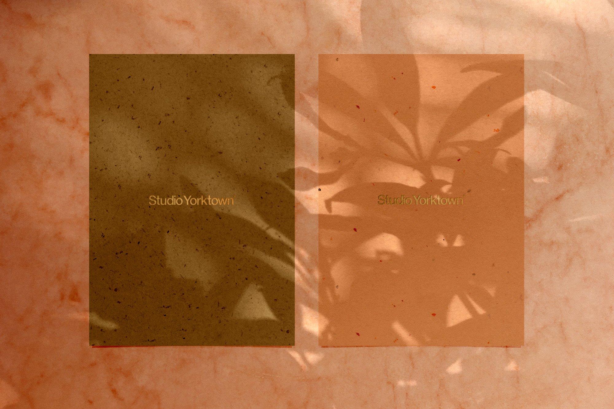 [淘宝购买] 15款高清植物阴影叠加PNG透明免抠图片素材 Madara – Botanical Shadow Overlays插图(11)