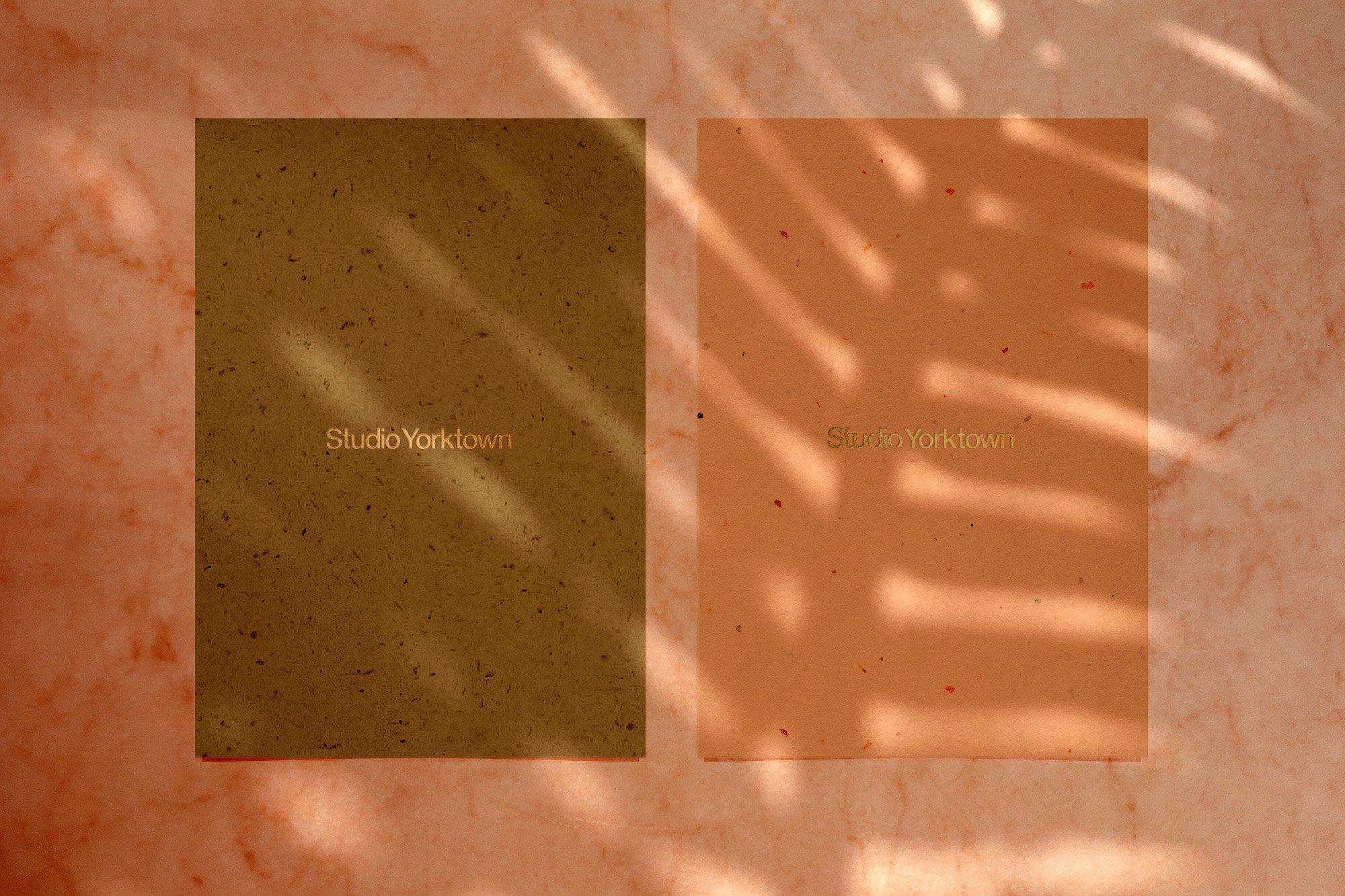 [淘宝购买] 15款高清植物阴影叠加PNG透明免抠图片素材 Madara – Botanical Shadow Overlays插图(12)