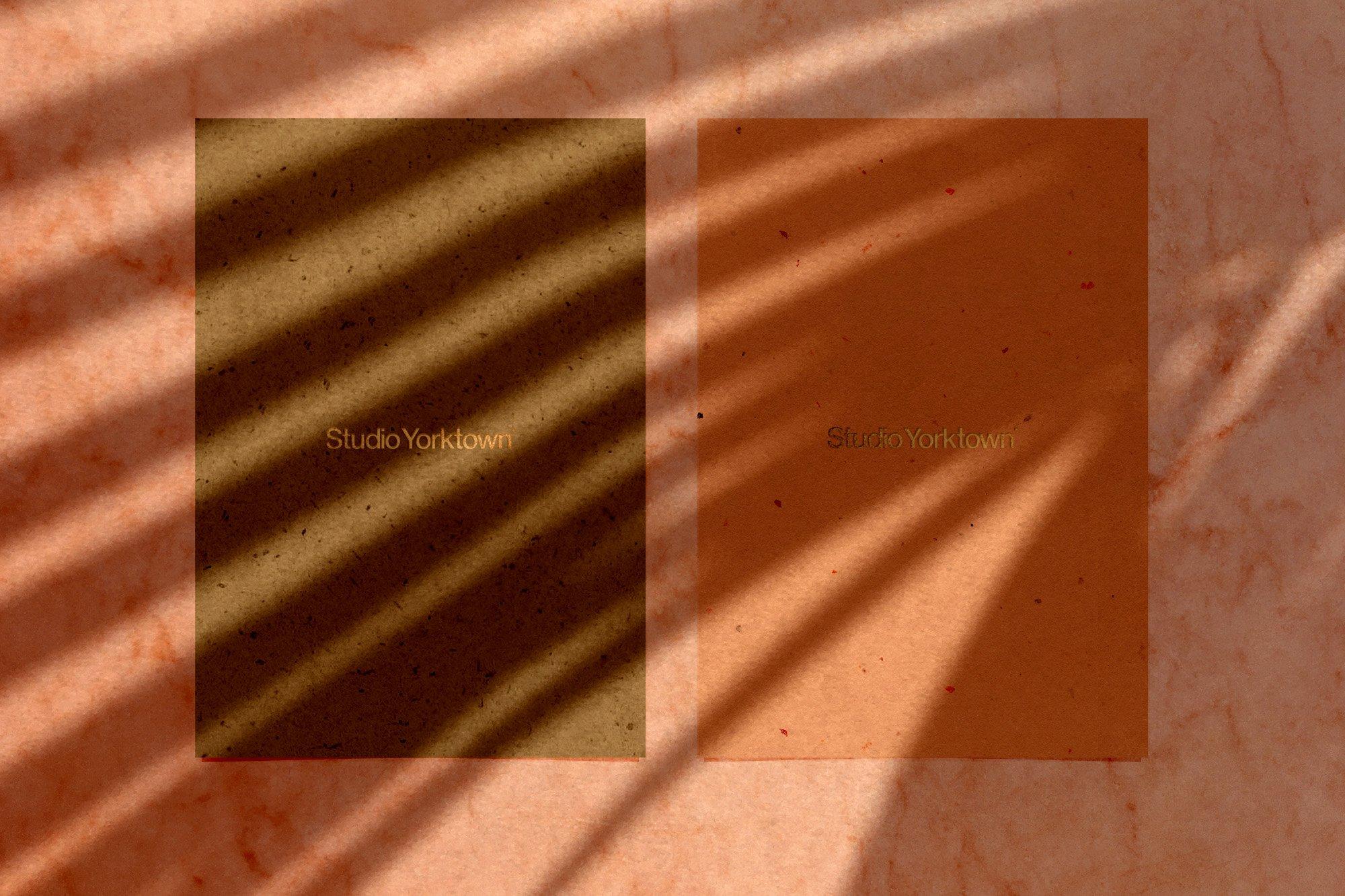 [淘宝购买] 15款高清植物阴影叠加PNG透明免抠图片素材 Madara – Botanical Shadow Overlays插图(14)