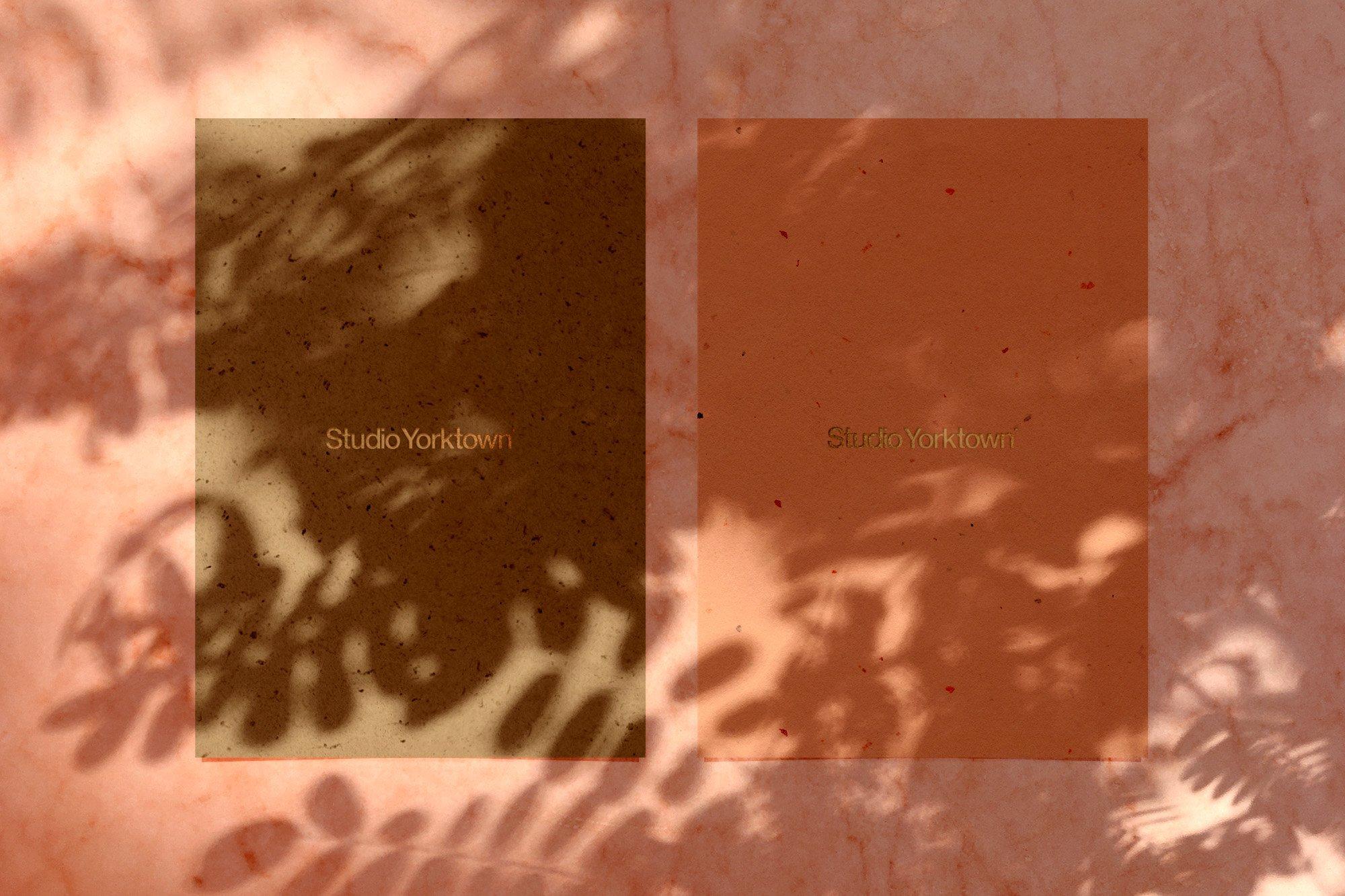 [淘宝购买] 15款高清植物阴影叠加PNG透明免抠图片素材 Madara – Botanical Shadow Overlays插图(16)