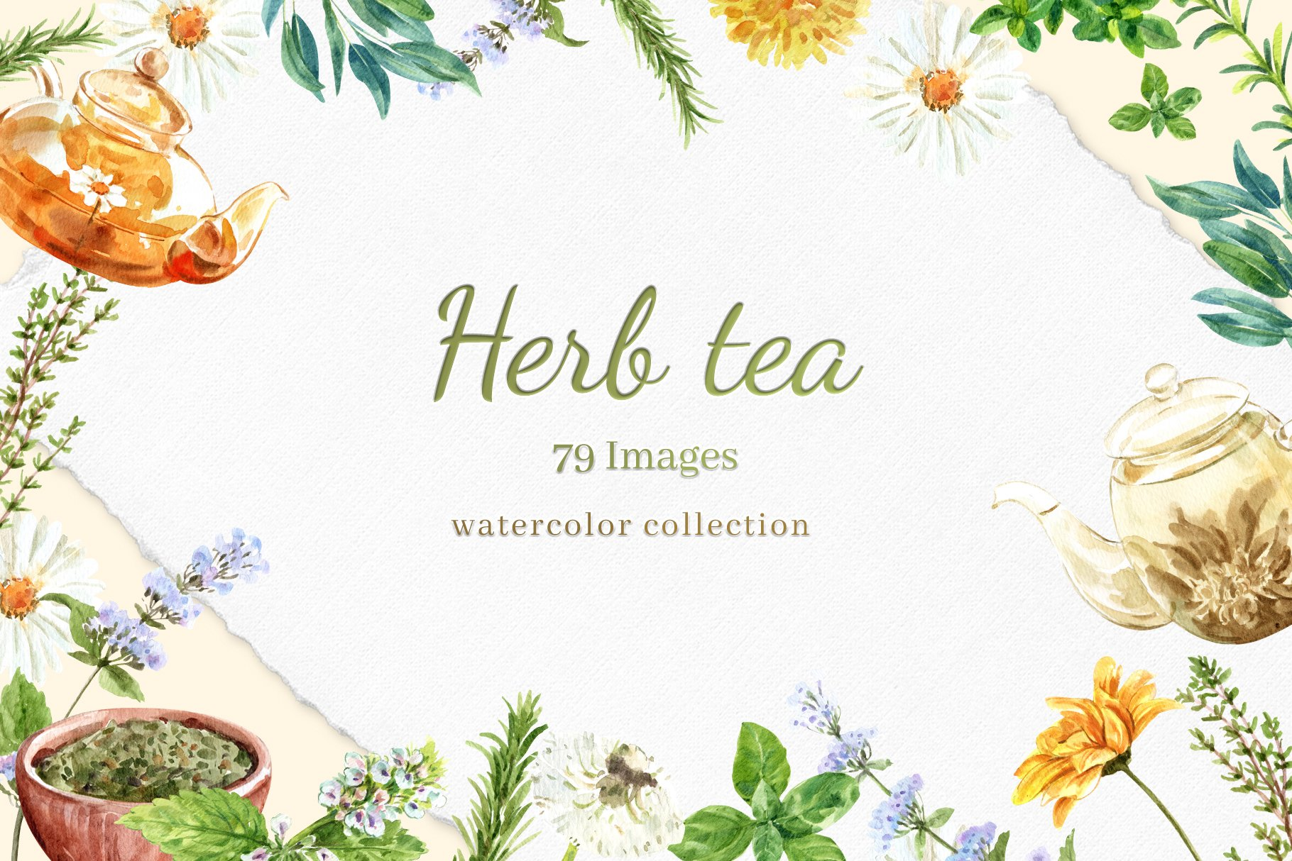 茶叶健康养生元素水彩画PNG免抠图片素材套装 Tea Time With Herbal Tea For Health插图