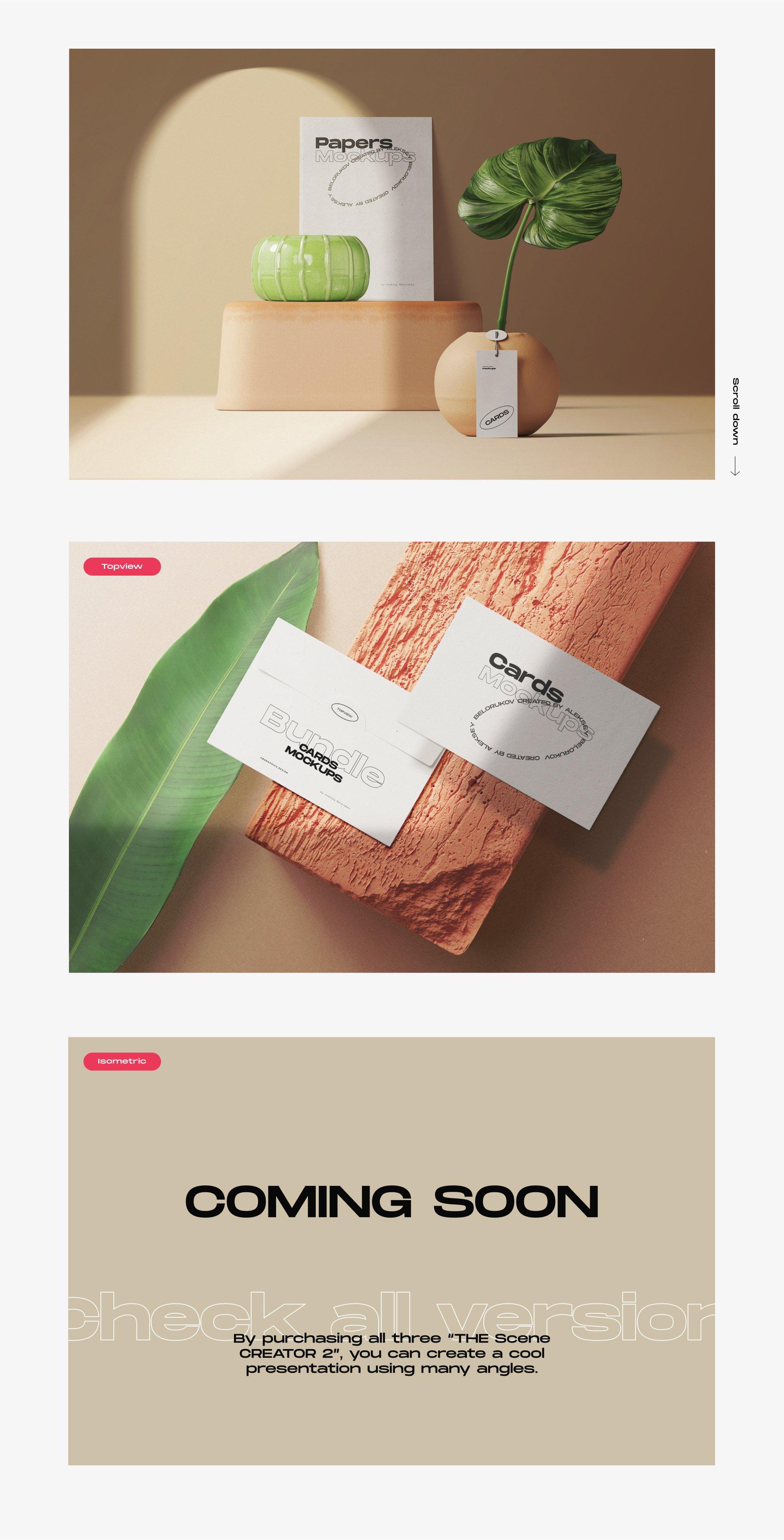 [淘宝购买] 超大品牌VI包装设计PS智能贴图样机模板素材 The Scene Creator 2 / Frontview插图(2)
