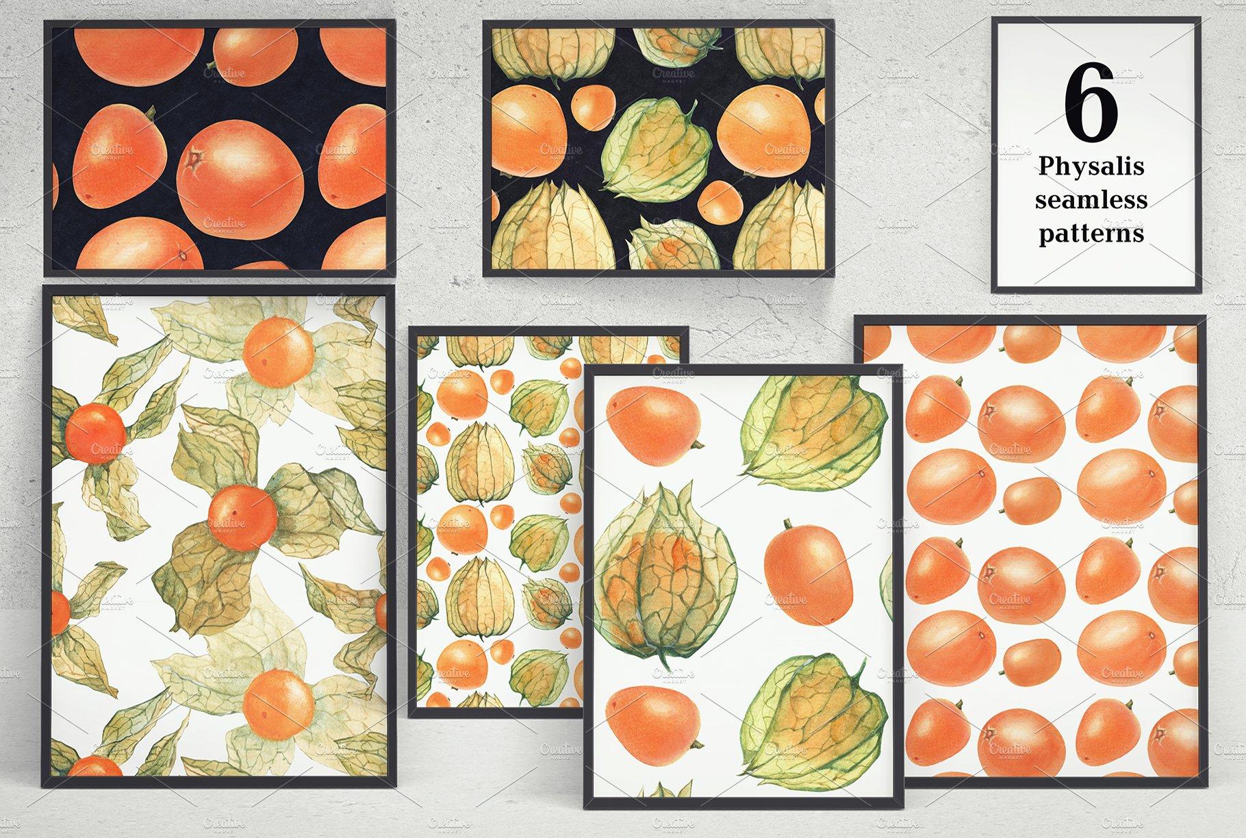 现代水彩水果装饰图案插图PNG透明图片素材 Physalis Botanical Watercolor插图(1)