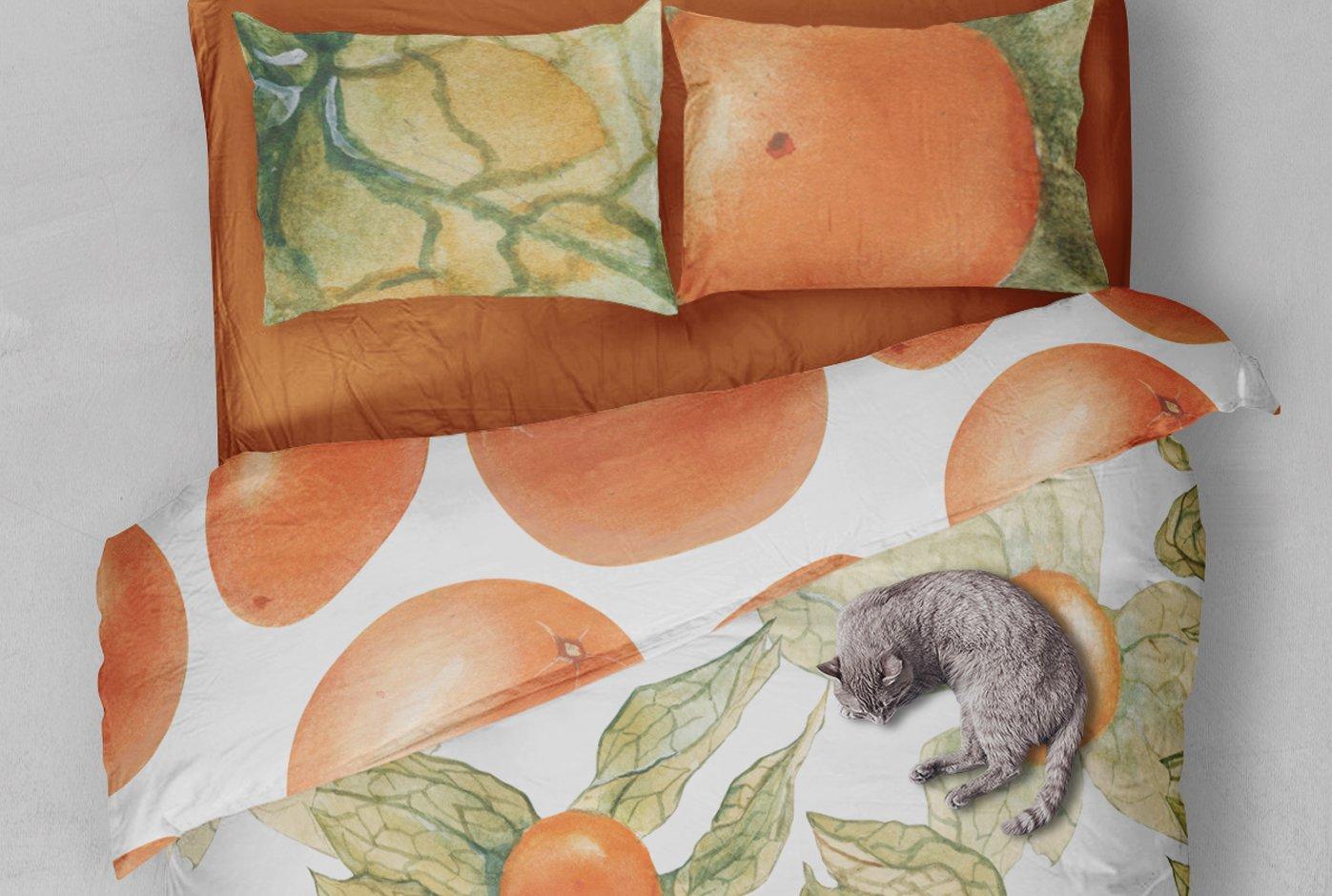现代水彩水果装饰图案插图PNG透明图片素材 Physalis Botanical Watercolor插图(4)