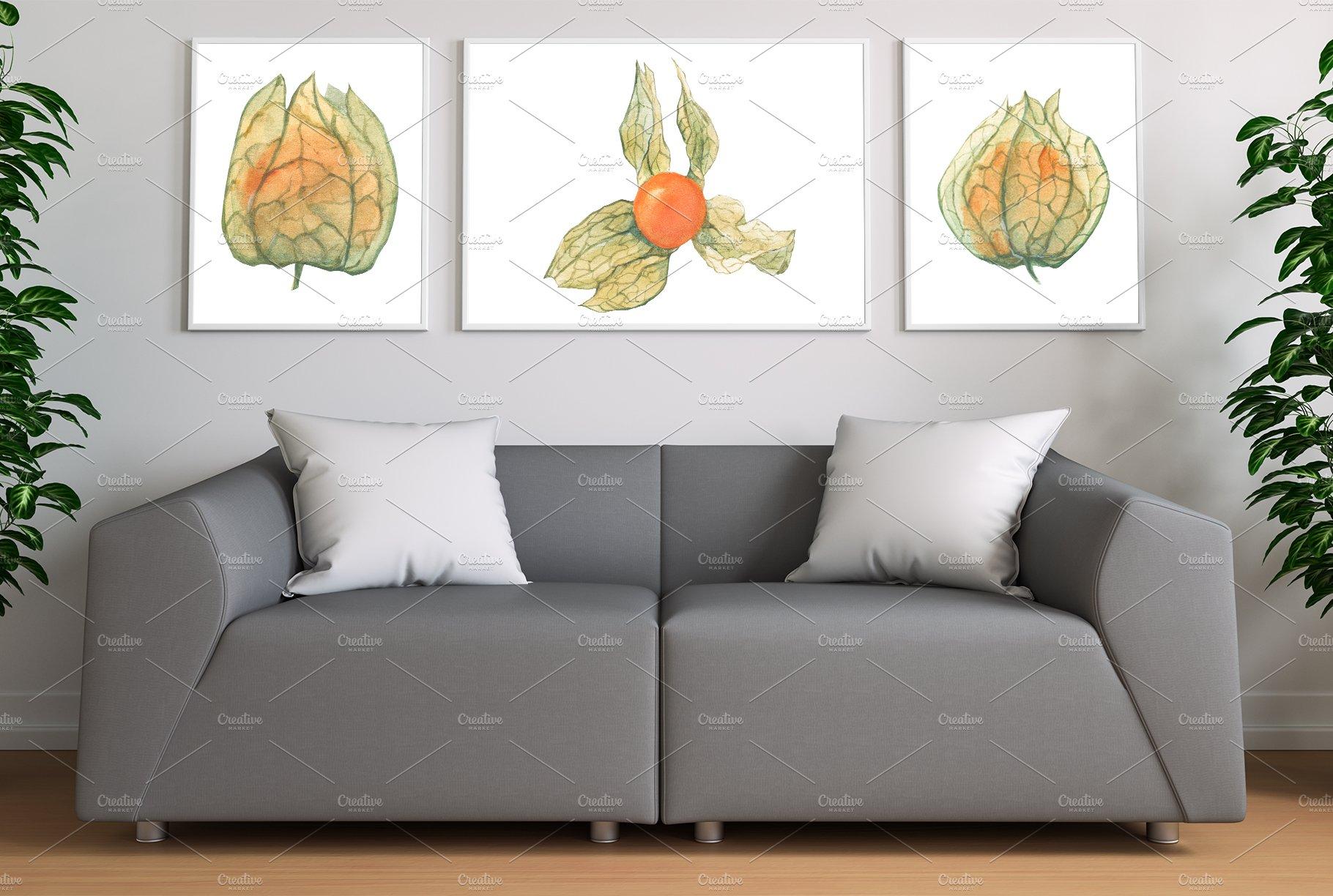 现代水彩水果装饰图案插图PNG透明图片素材 Physalis Botanical Watercolor插图(5)